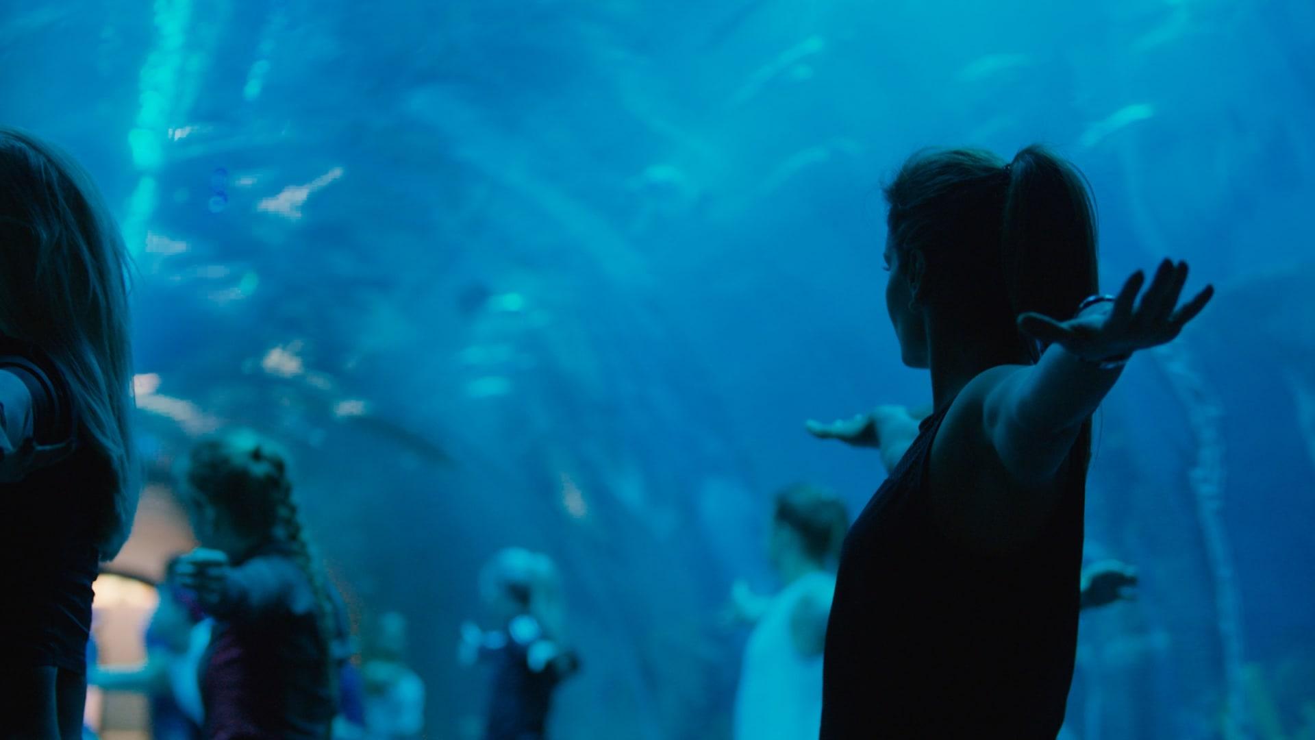 يوغا تحت الماء في دبي وبين 30 ألف سمكة.. هل تجربها؟