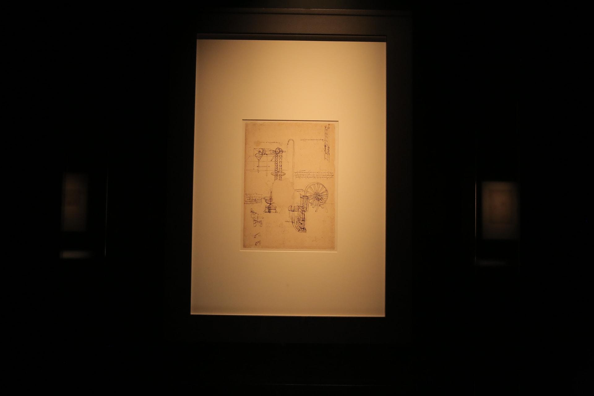 مخطوطات في السعودية