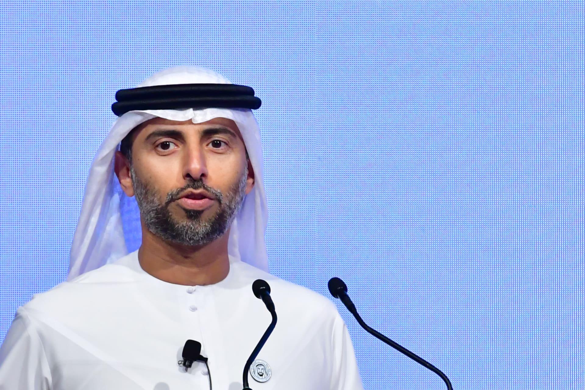 """الإمارات تستثمر 50 مليار درهم ضمن برنامج """"غدا 21"""" خلال ثلاثة أعوام"""