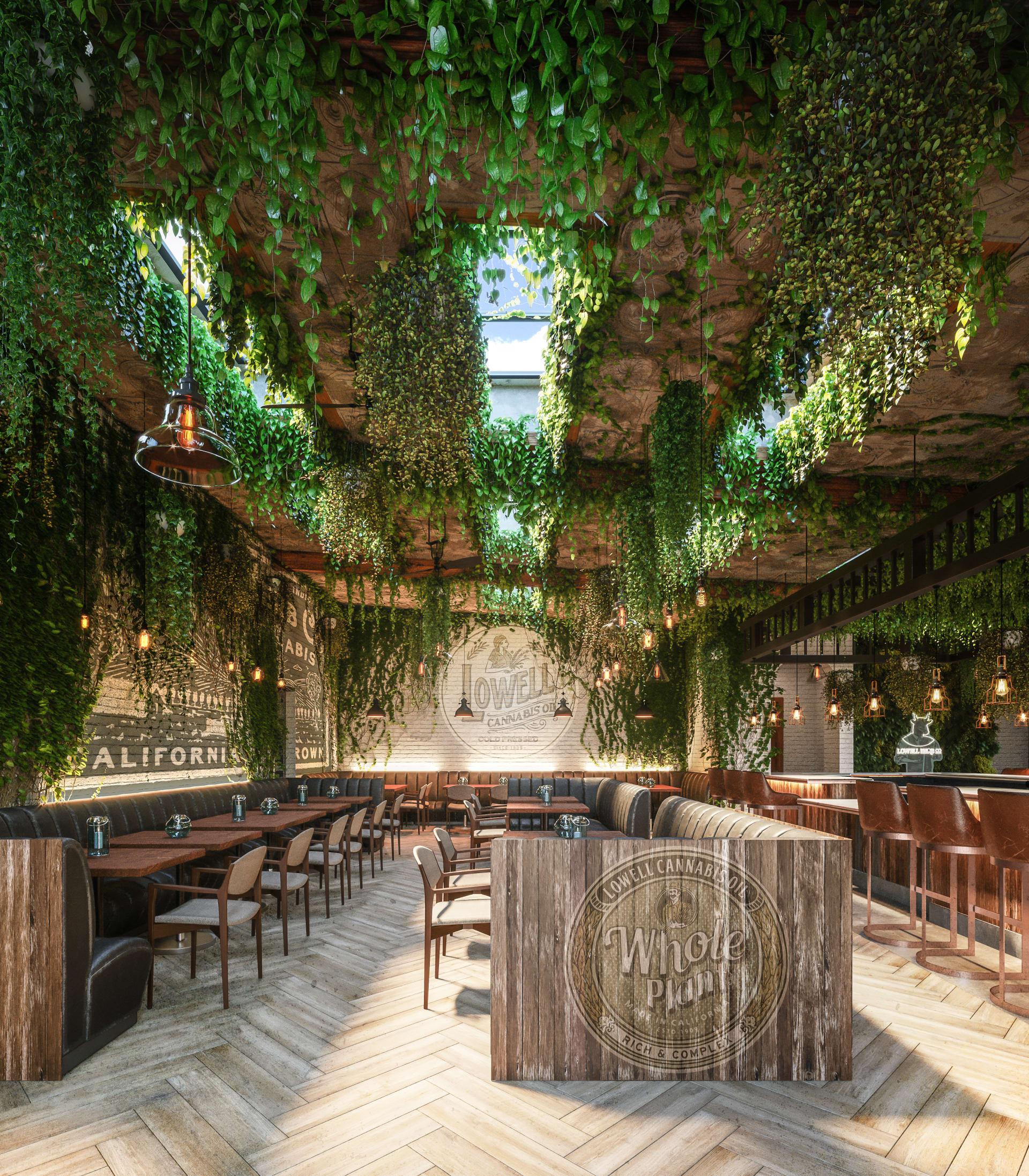 """أول مقهى """"حشيش"""" يفتح أبوابه في الولايات المتحدة"""