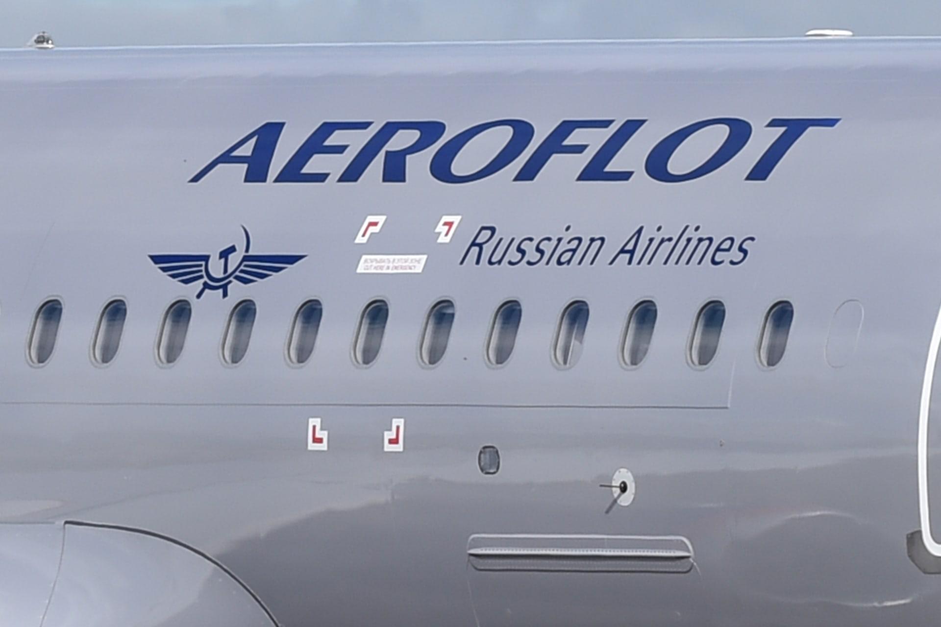 حُرم من برنامج الولاء وأمياله الجوية..راكب يهرّب قطة سمينة على متن طائرة روسية