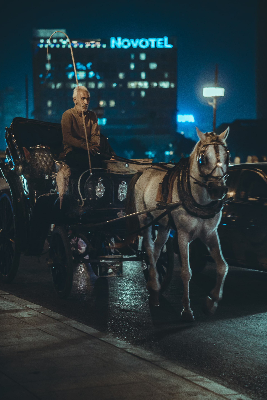 عربة الحنطور في القاهرة