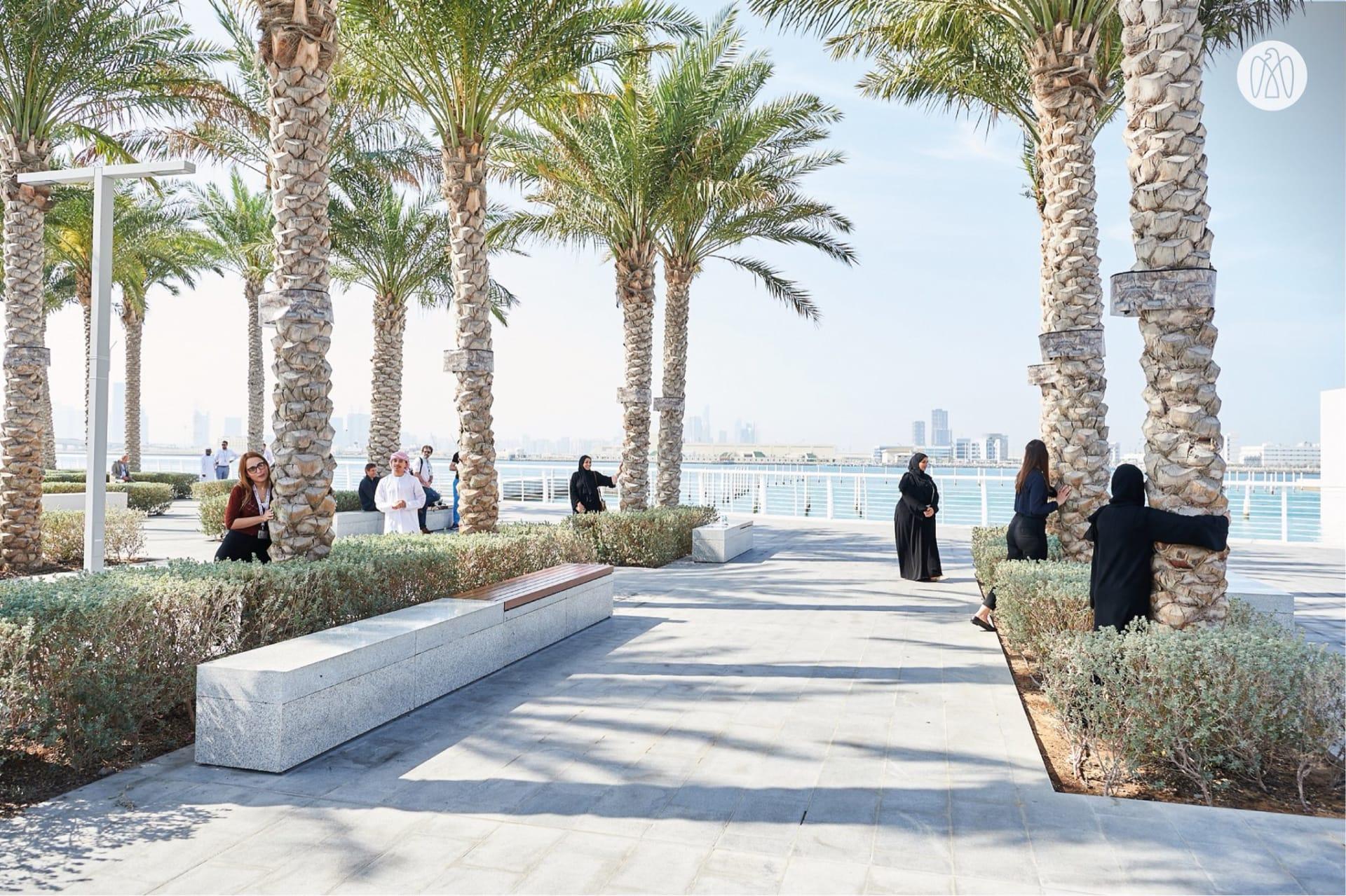 """في الإمارات.. أشجار نخيل تغني """"بصوتها الخاص"""" لدى معانقتك لها"""