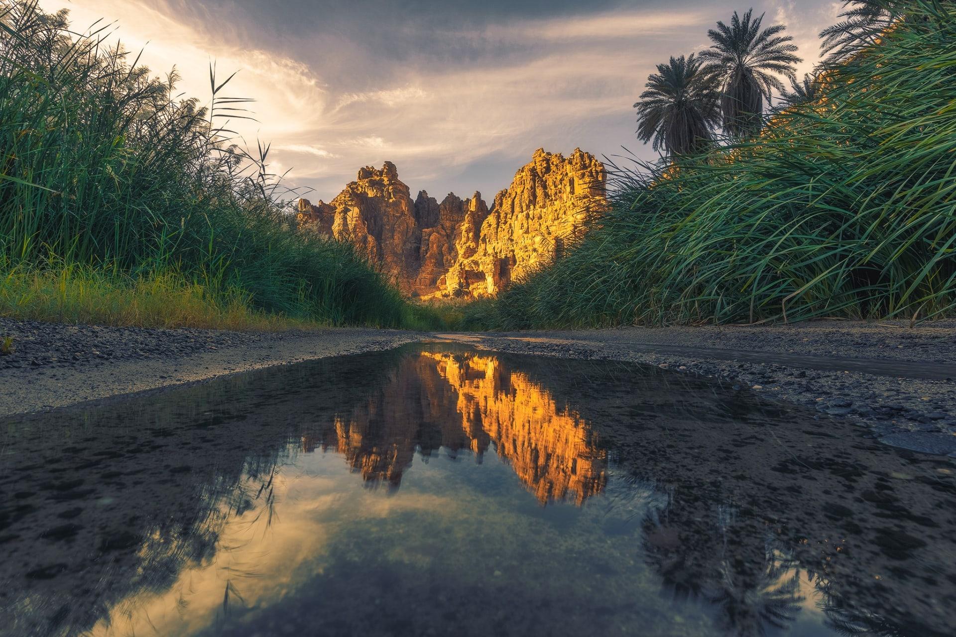 وادي الديسة في السعودية