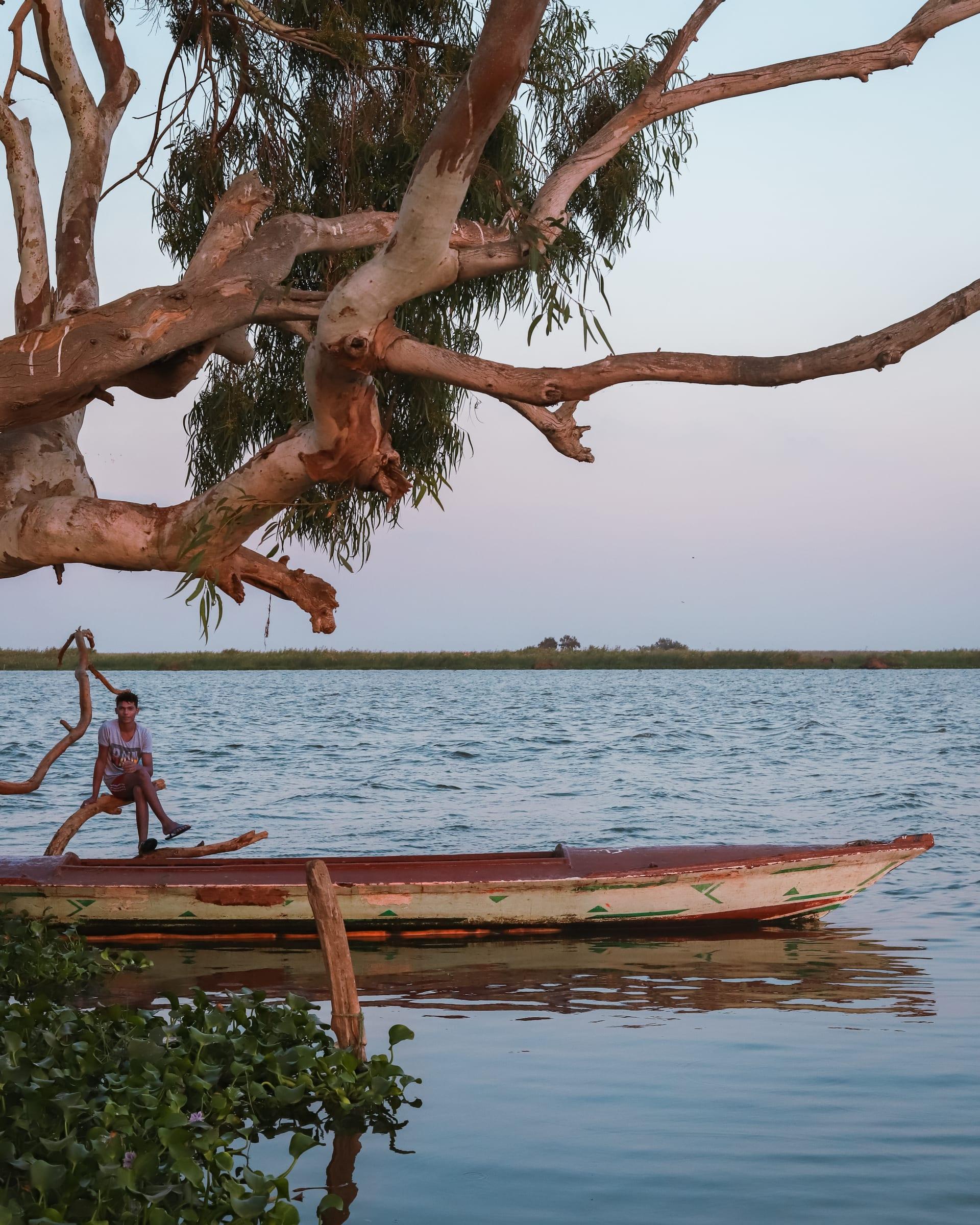 """منزل مهجور يتوسط بحيرة البرلس في """"الشخلوبة"""" بمصر.. ما حكايته؟"""