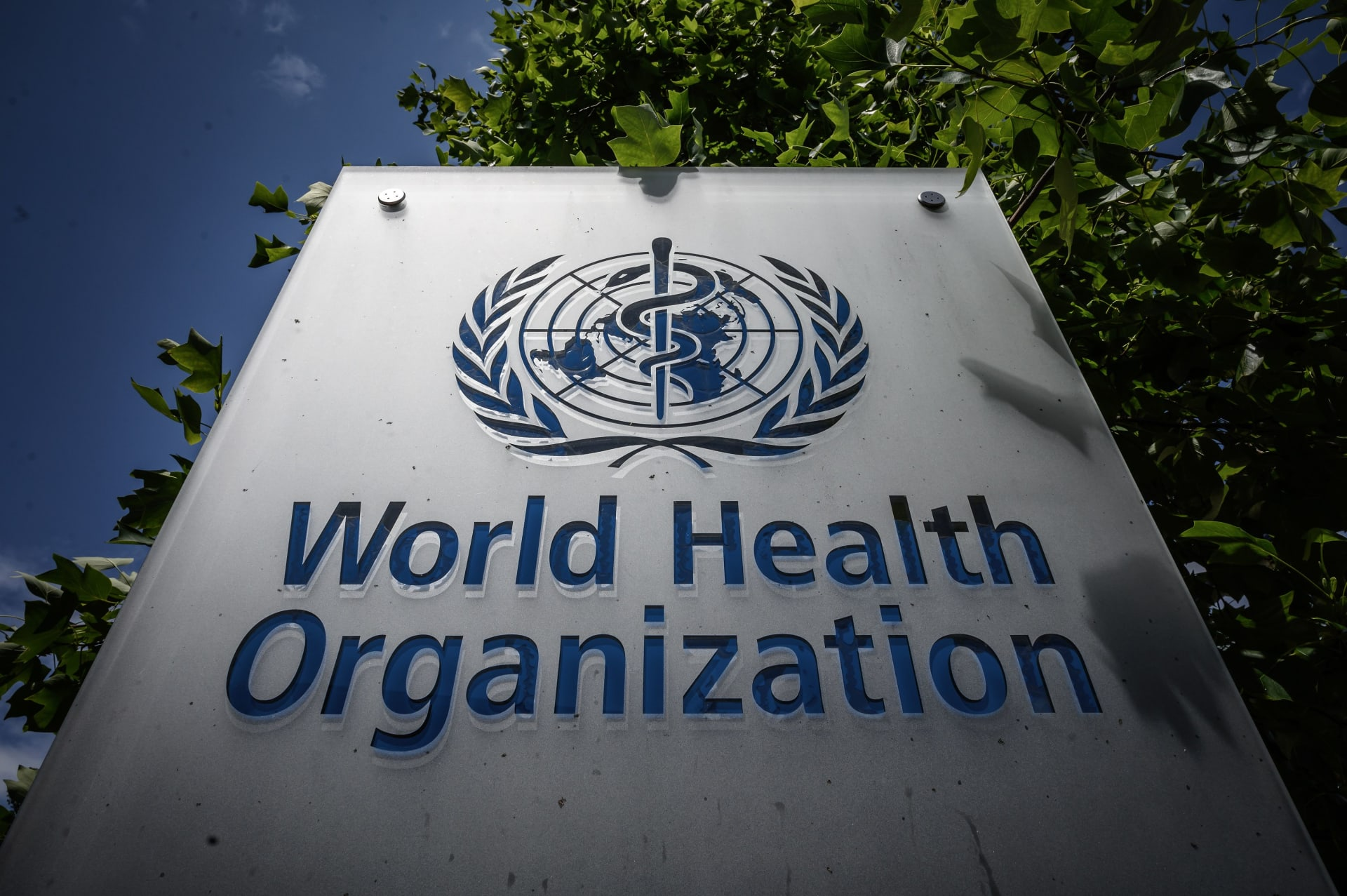 الصحة العالمية تُحذر الدول من الدهون المُتحولة وسط جائحة كورونا