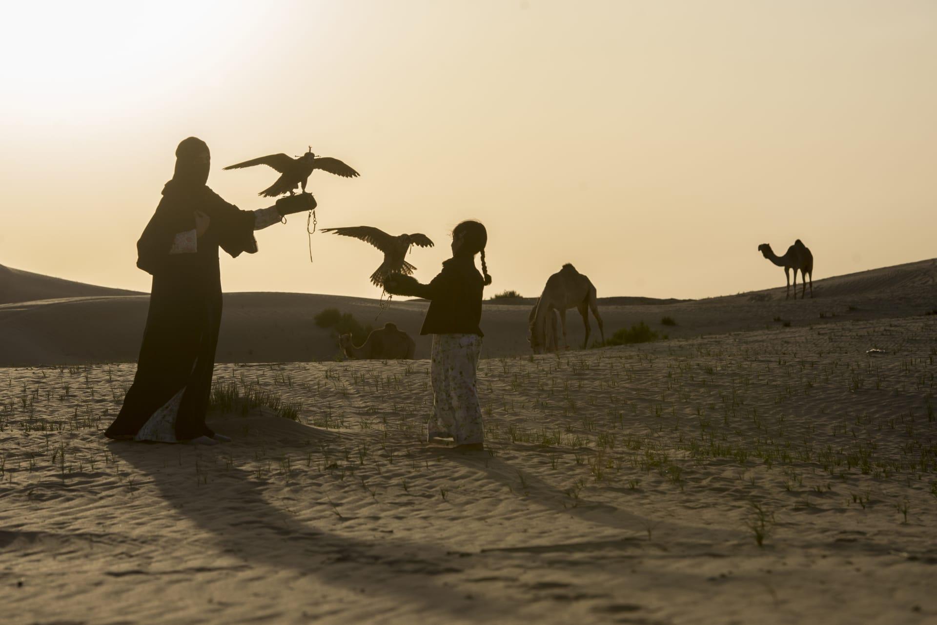 المصورة الوثائقية، فيديا تشاندراموهان