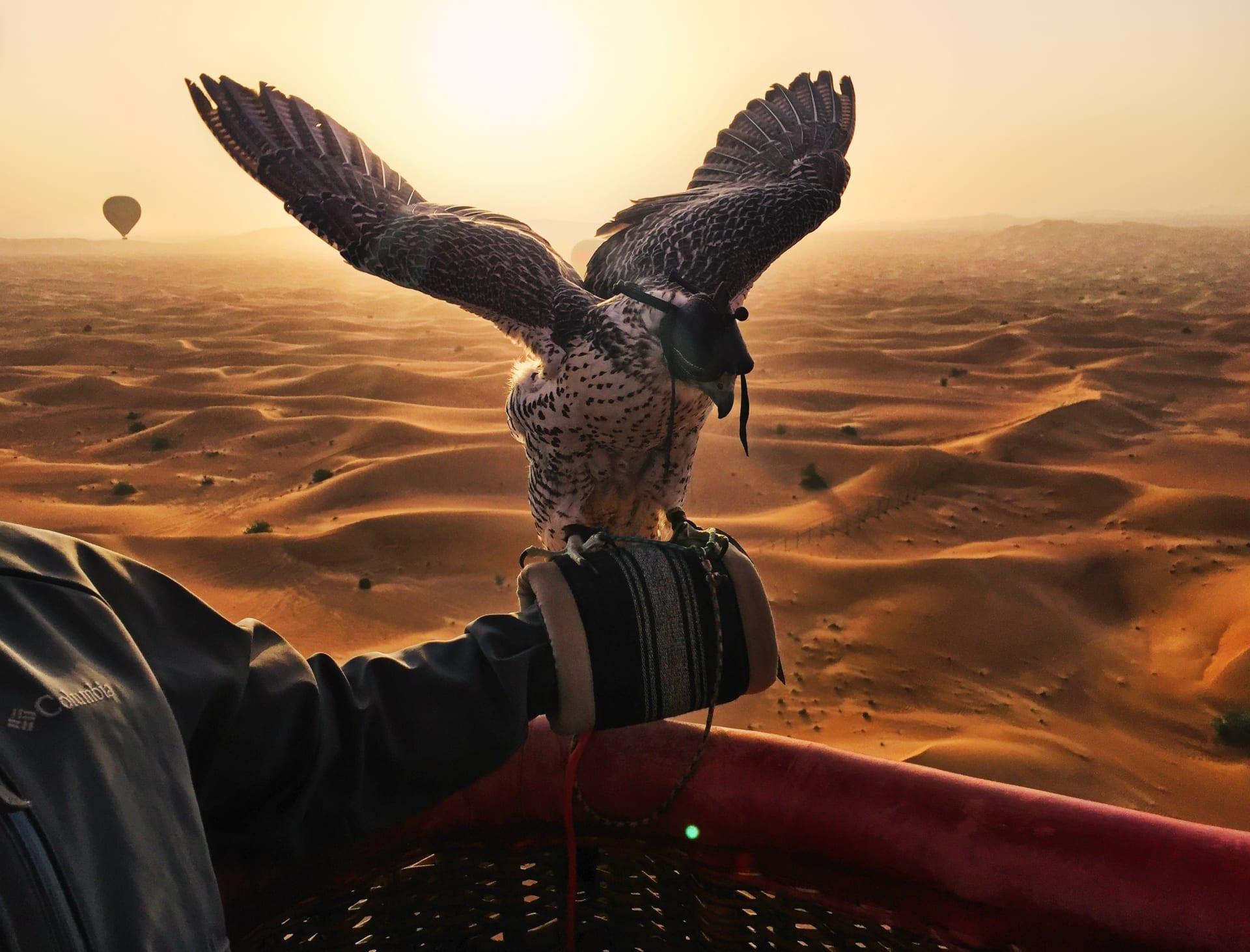 تجربة تخطف الأنفاس..حلّق عالياً مع الصقور على متن هذا المنطاد فوق صحراء دبي