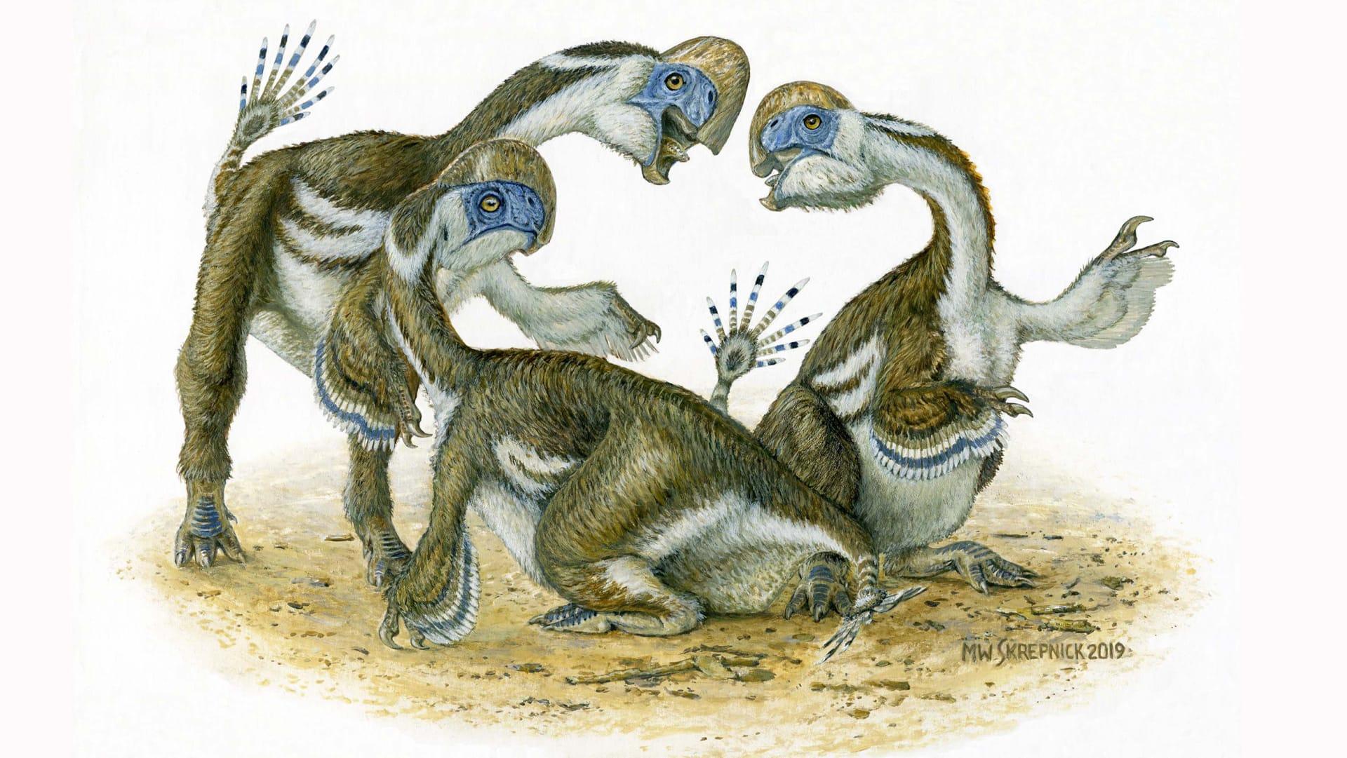 بلا أسنان وشبيه بالببغاء.. كيف ازدهر هذا الديناصور قبل 69 مليون عام؟