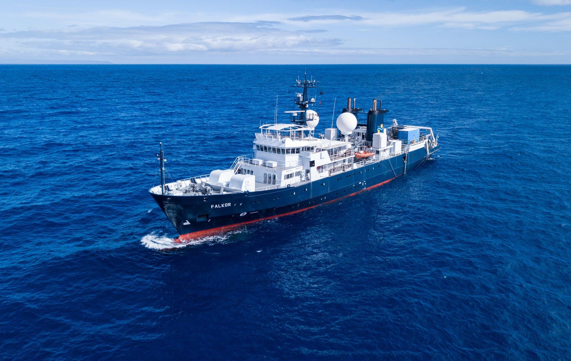 اكتشاف حبار وحيد من نوعه في أعماق المحيط بأستراليا