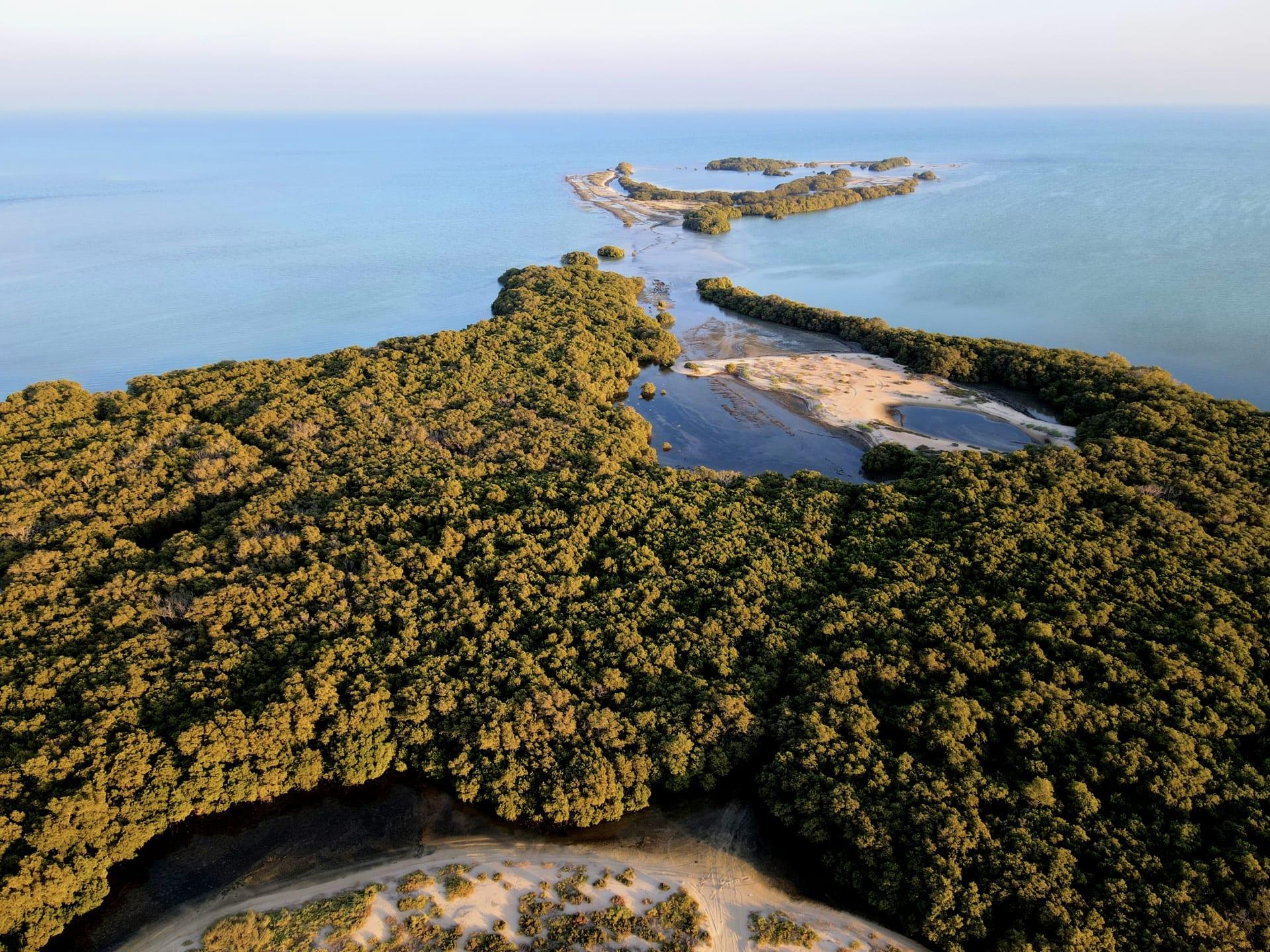 جزيرة بوطينة في أبوظبي