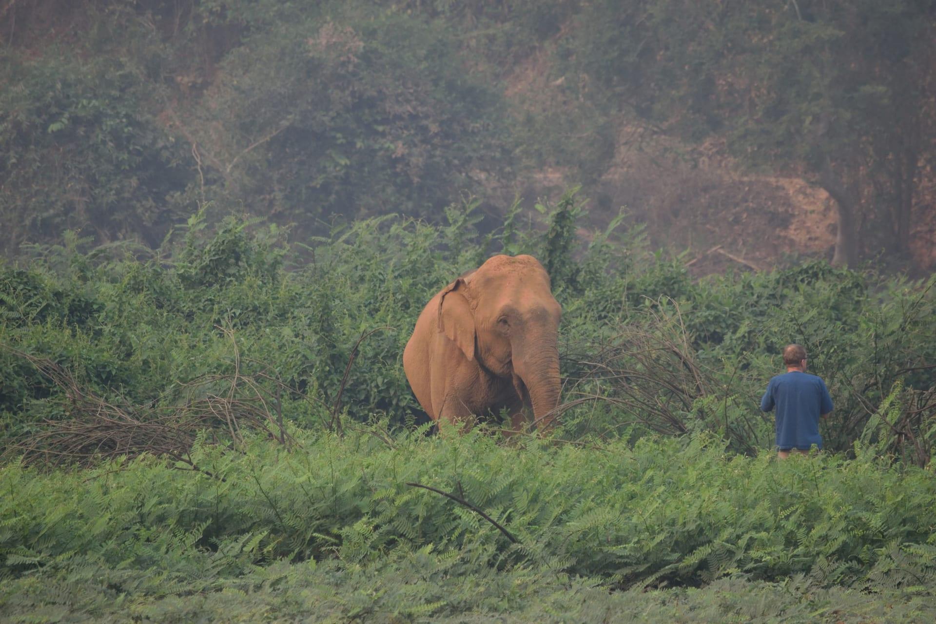 في عصر مكالمات الفيديو.. لم لا تقابل فيلا على بعد آلاف الكيلومترات منك؟
