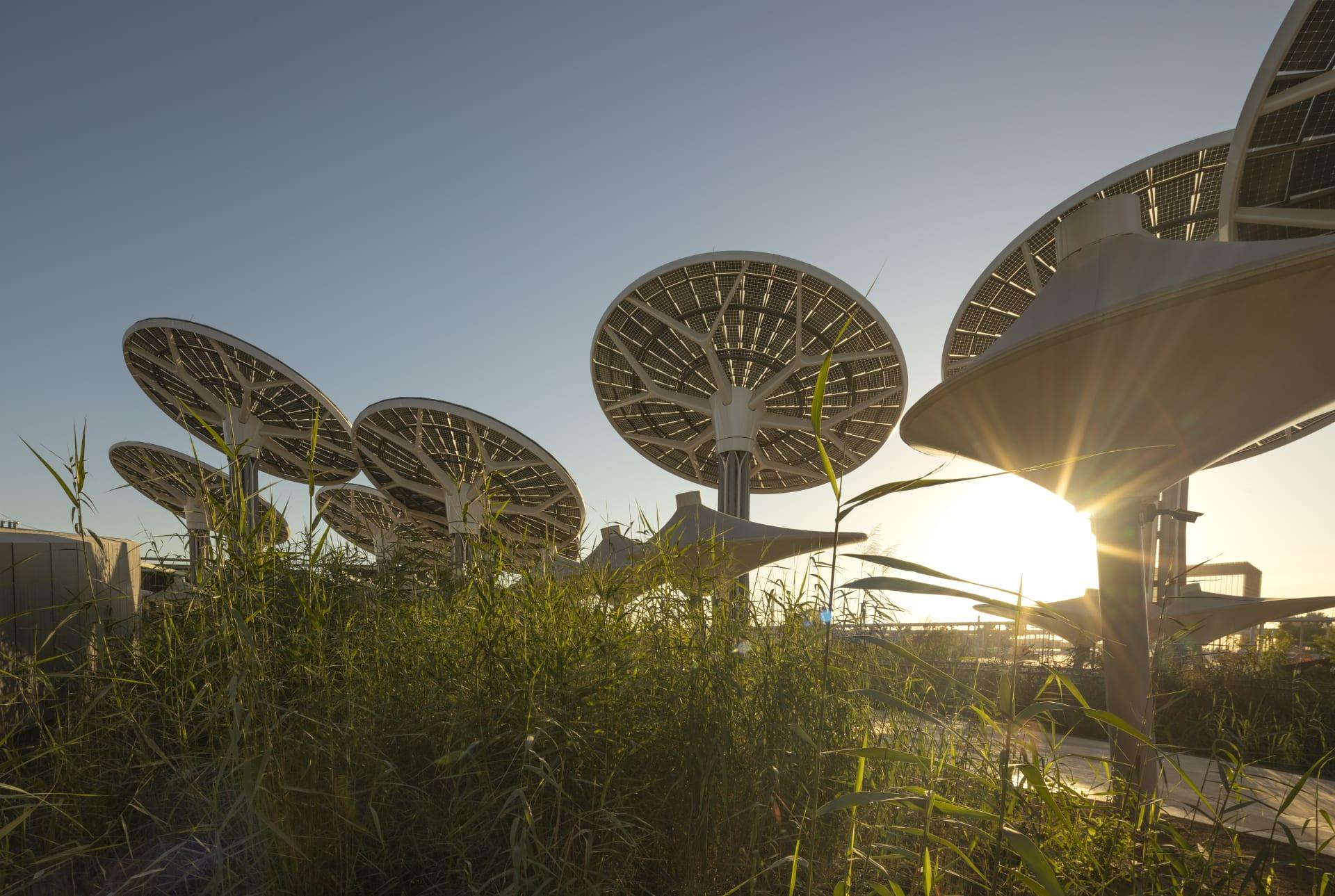 """جناح الاستدامة """"تيرّا"""" إكسبو 2020 دبي"""