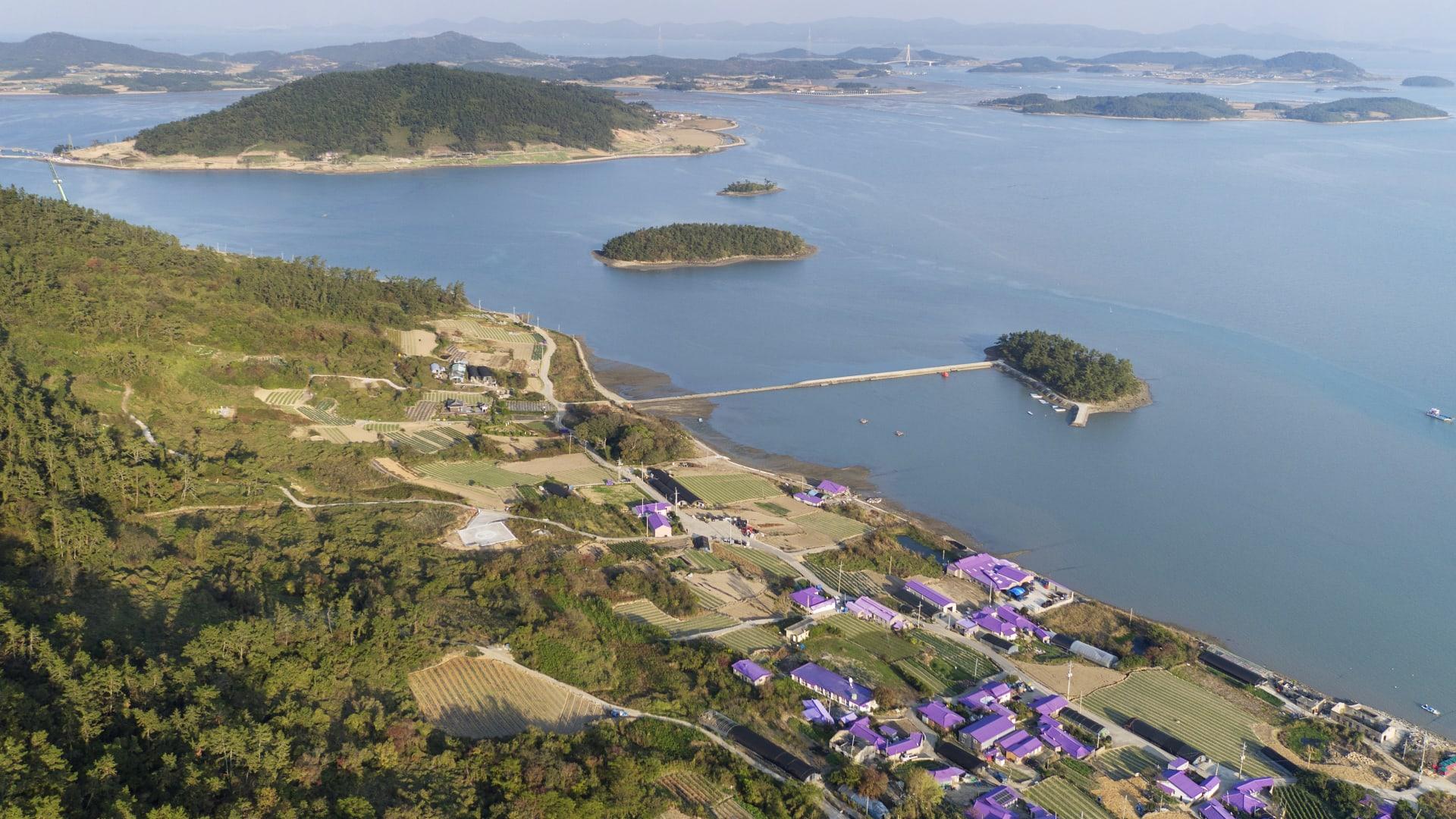 تُعد هذه الجزيرة البنفسجية في كوريا الجنوبية حلم المصورين