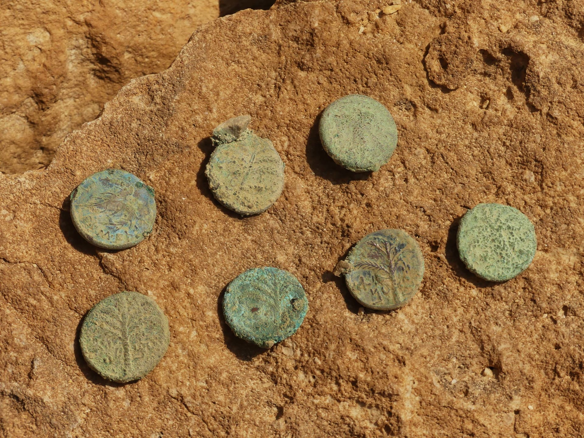 """داخل """"كهف الرعب"""".. العثور على قطع من مخطوطات البحر الميت في كهف صحراوي بإسرائيل"""