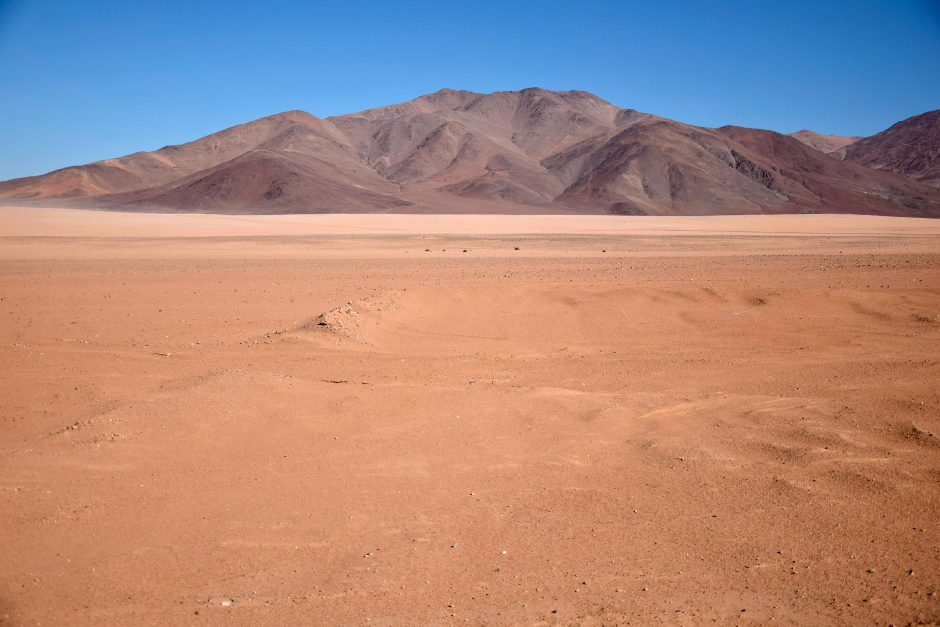 صحراء أتاكاما