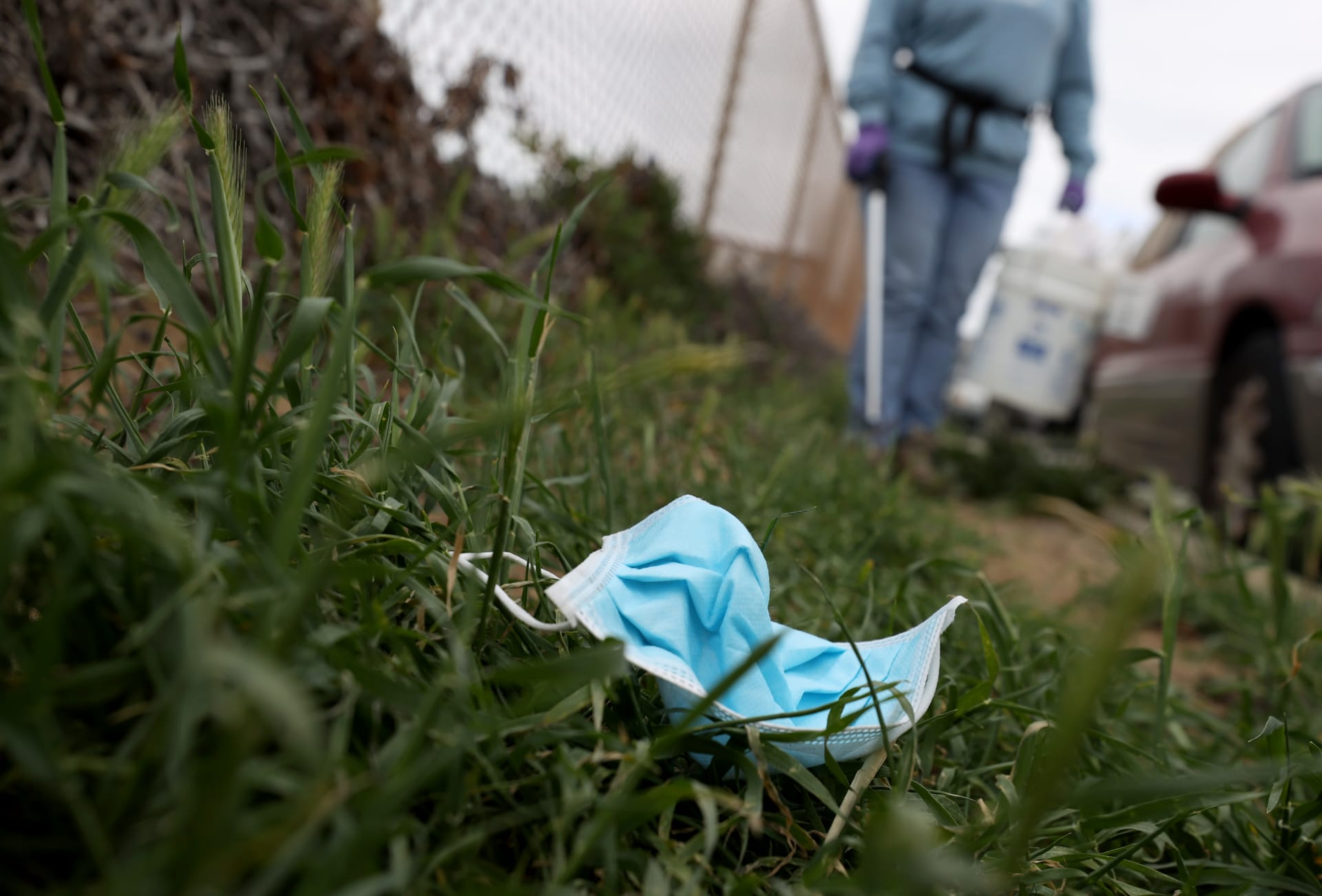 تنتج الزهور بدلاً من القمامة.. تتحول هذه الكمامات القابلة للتحلل إلى زهور عند التخلص منها