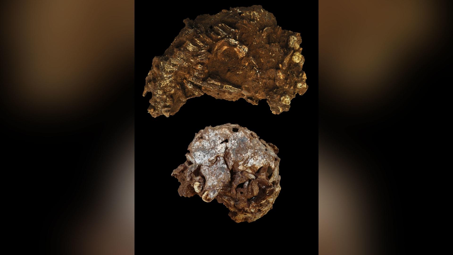 عمره 78 ألف عام.. يحتضن أقدم مدفن بشري بأفريقيا طفلاً وُضع ليرقد على وسادة