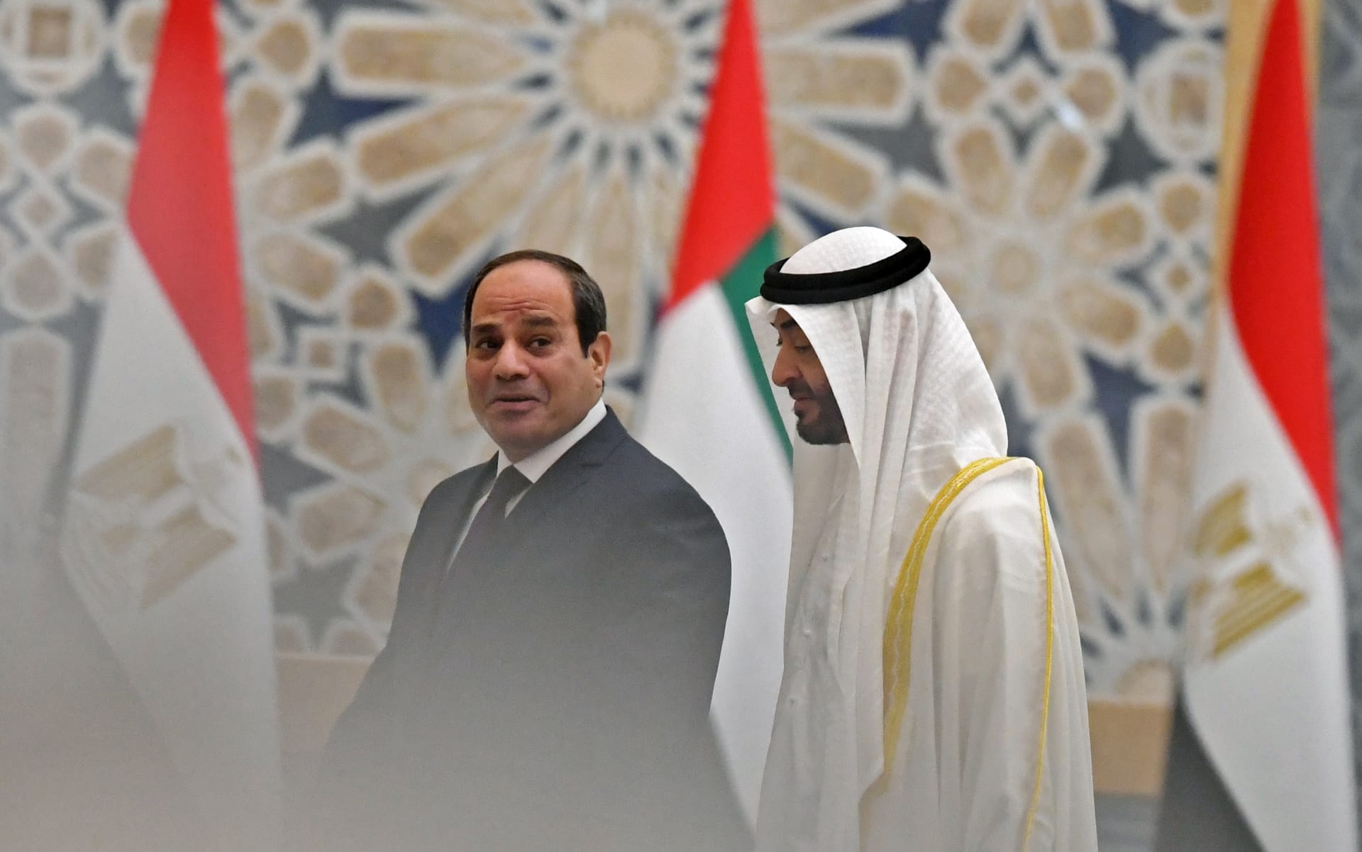 الرئيس المصري عبدالفتاح السيسي والشيخ محمد بن زايد