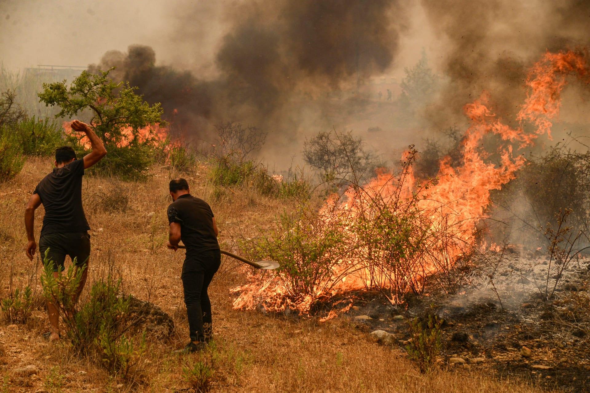 عشرات من حرائق الغابات في تركيا بعضها بنطاق وجهات سياحية حيوية