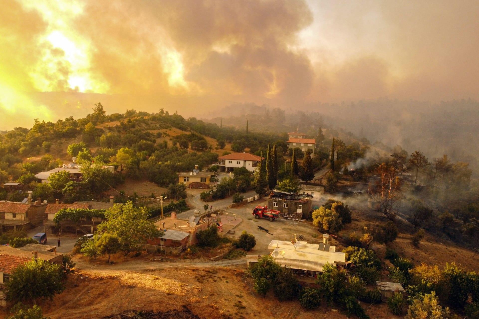 شاهد.. فراشة تهرب من حرائق الغابات بتركيا وترتوي من يد عامل إغاثة