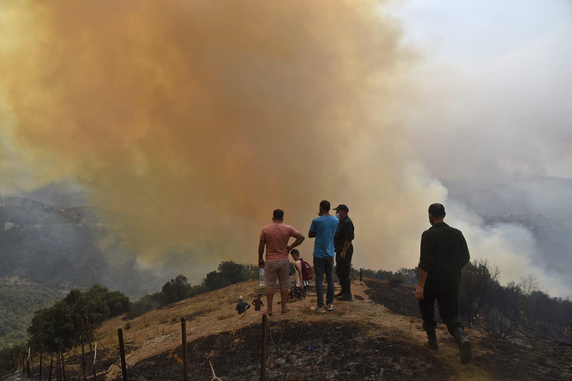 رئيس الجزائر يعلن القبض على 22 شخصًا مشتبه بهم في إشعال حرائق الغابات