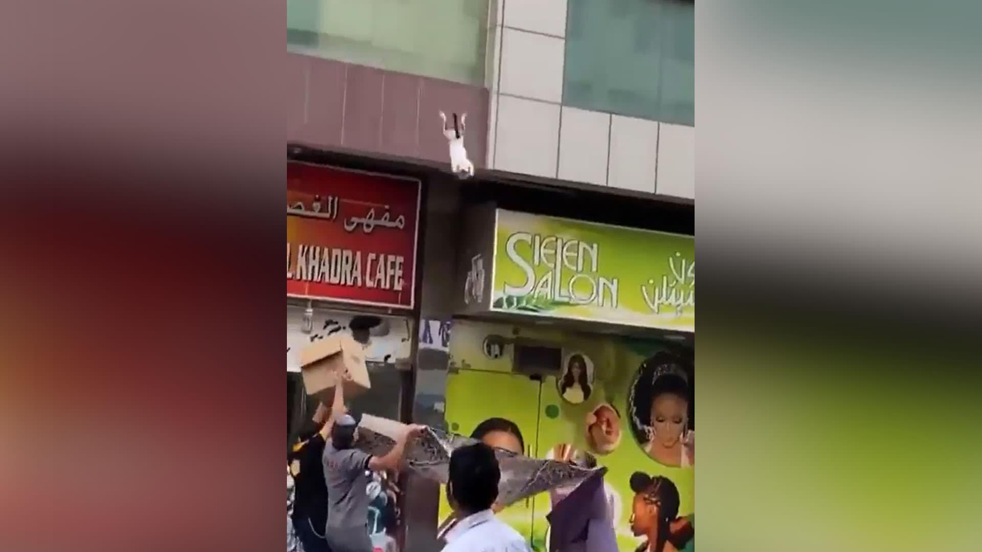 تداول فيديو لإنقاذ قطة في دبي.. ومحمد بن راشد يعلق