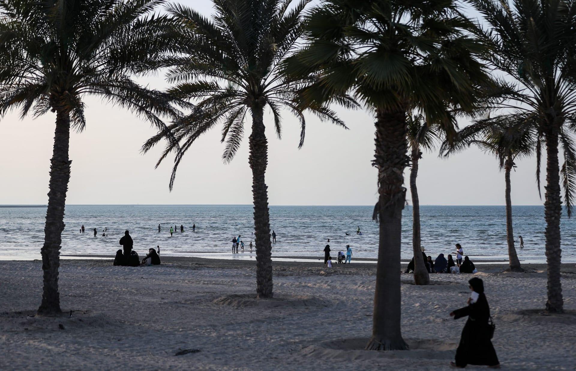 ما سبب ظهور الثعابين البحرية في بعض شواطئ أبوظبي بالإمارات؟