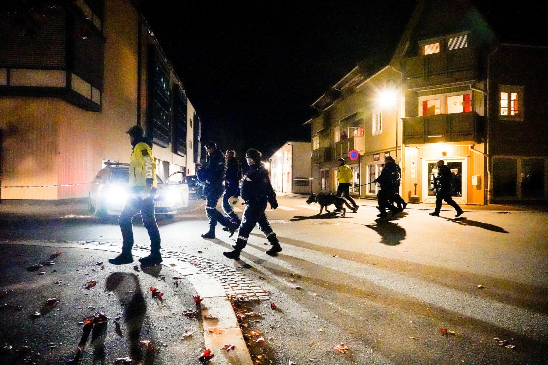 انتشار الشرطة في بلدة كونغسبيرغ النرويجية