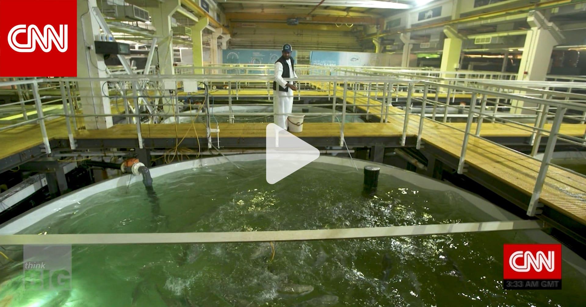 مزرعة للأسماك تحاكي بيئة أي محيط في العالم وسط صحراء دبي