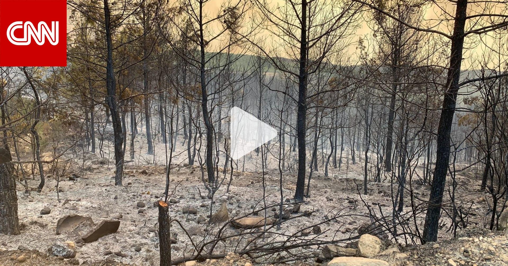 صهرت ما اعتُقد أنه لا ينصهر.. شاهد آثار حرائق الغابات التي تشتعل في تركيا
