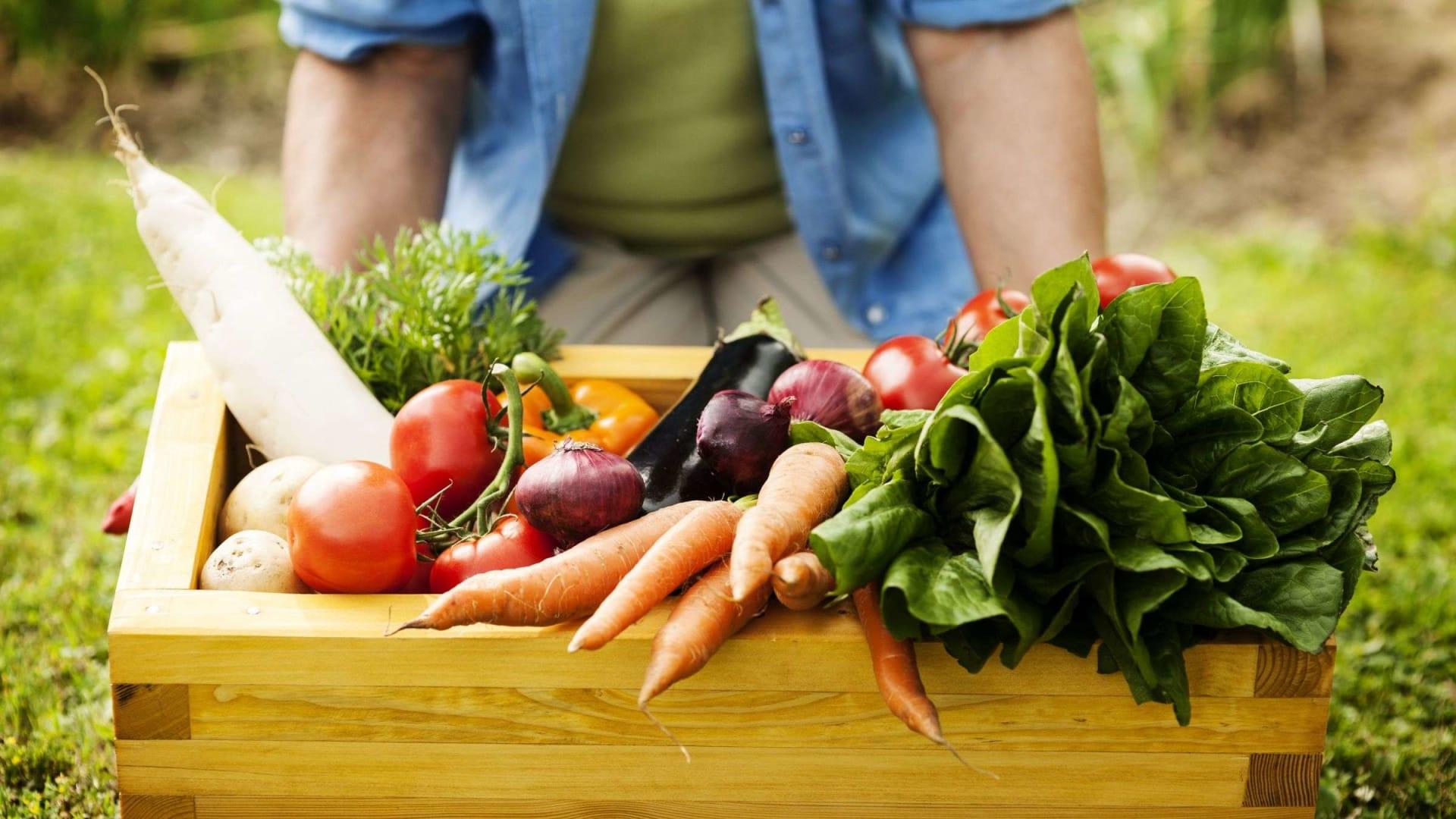 كيف تحسن عاداتك الغذائية في عام 2021؟ إليك بعض النصائح