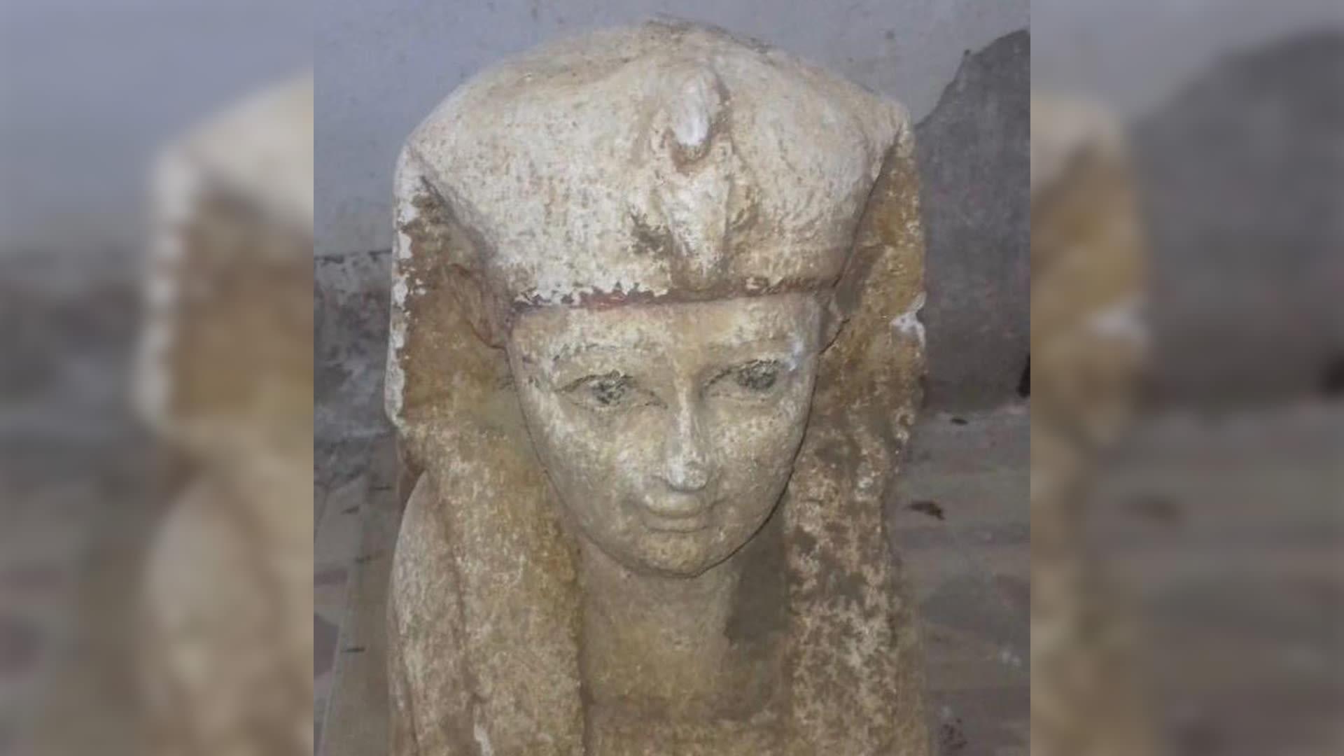 جولة على مومياوات نادرة لأشبال أسد وتماسيح وقطط في مصر