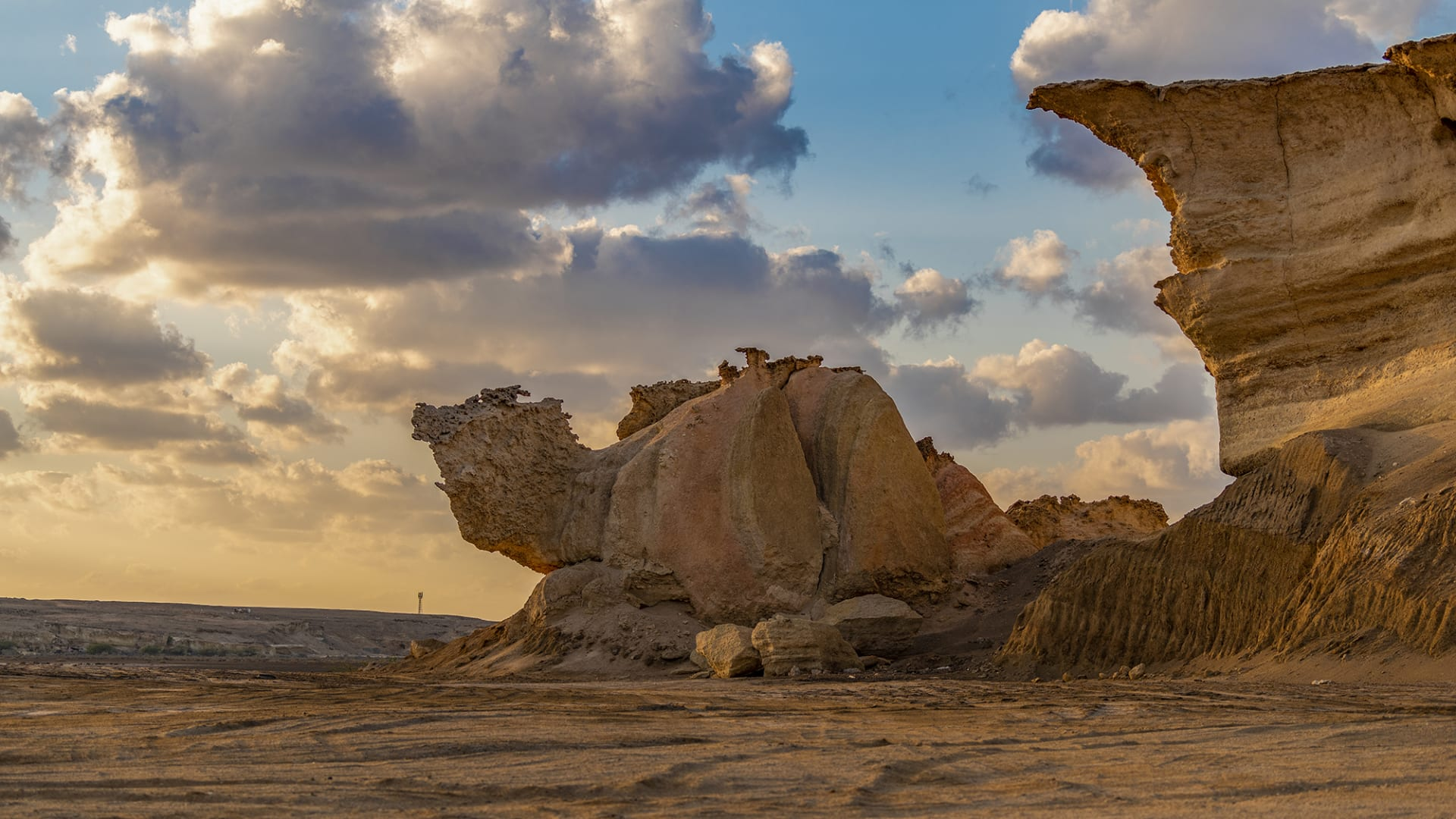 منها حطام الدجاج.. إليك أفضل مواقع الغوص بالسعودية