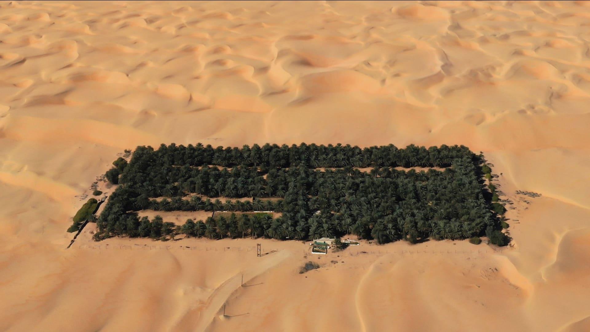 """لقطات """"درون"""" رائعة لـ5 أماكن سياحية في أبوظبي"""