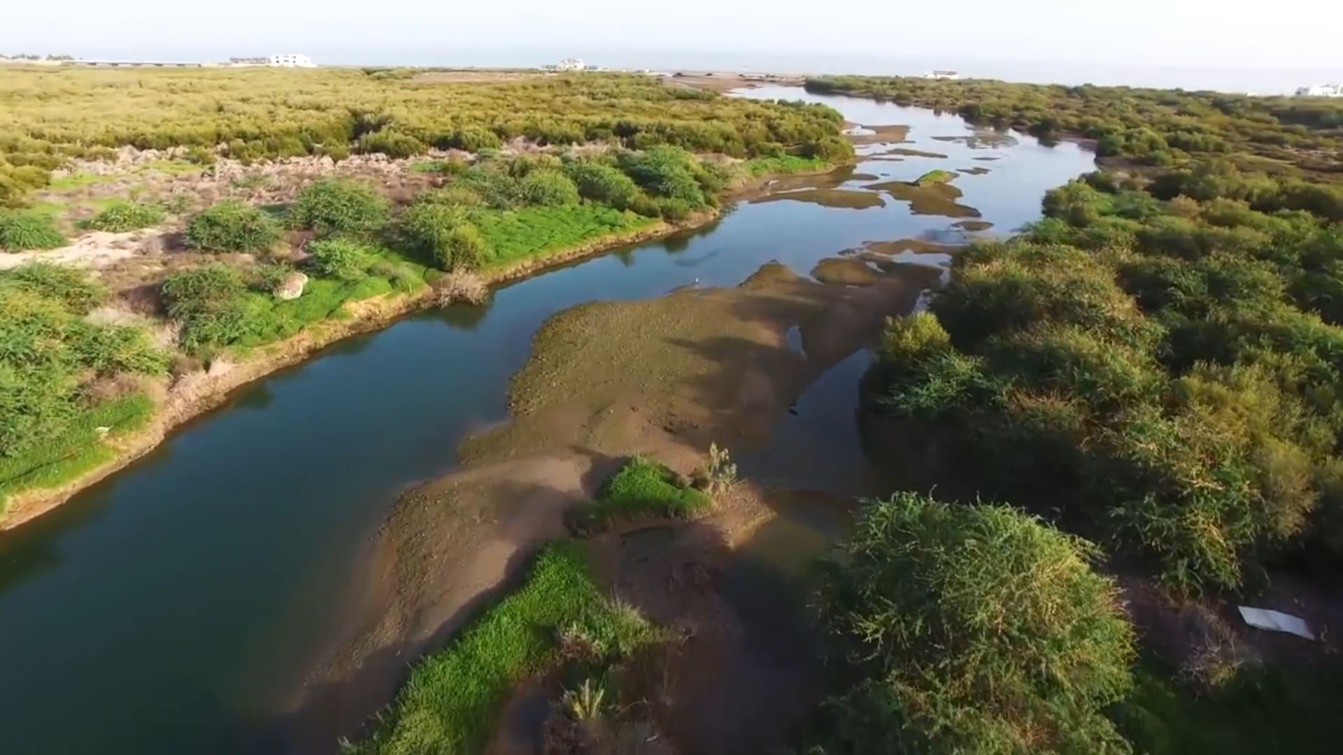 محمية القرم في سلطنة عمان
