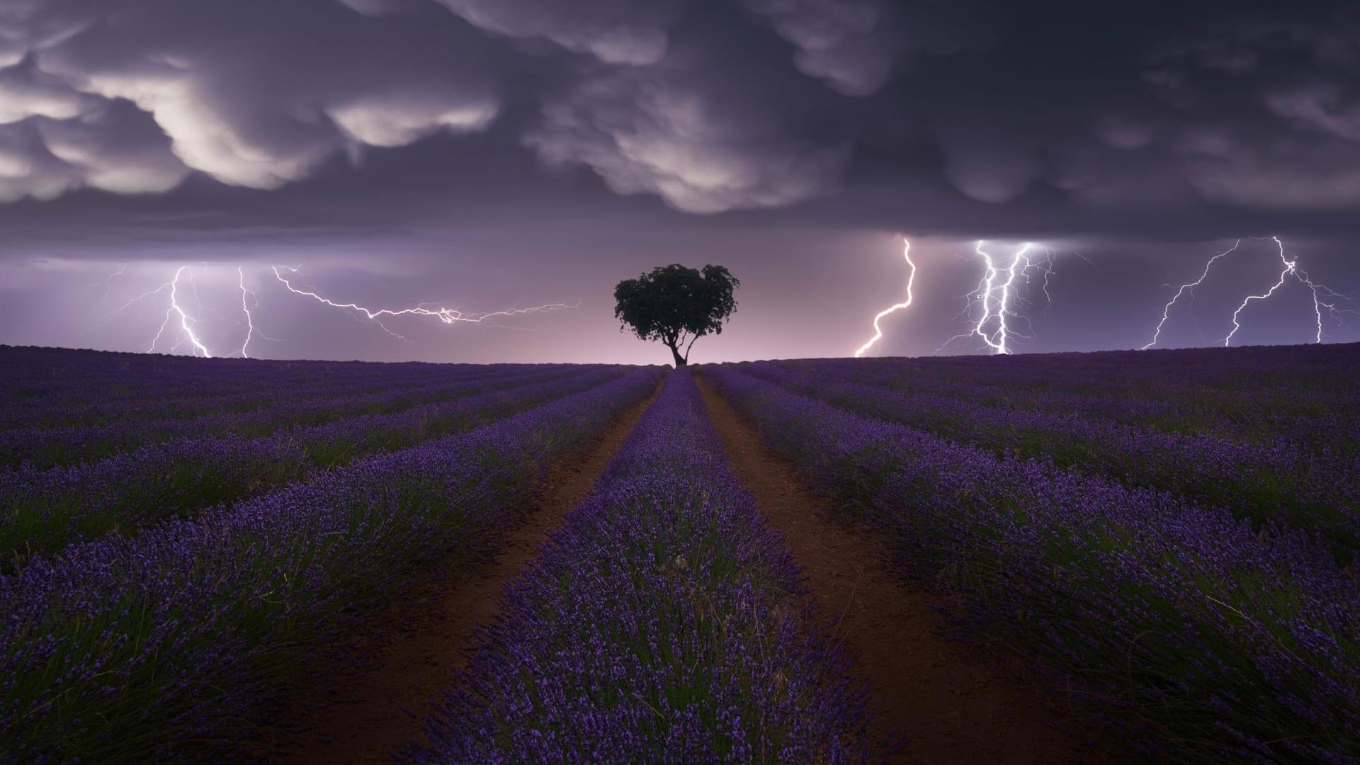وادي لجب - السعودية - المصور السعودي علي سعيد العشير