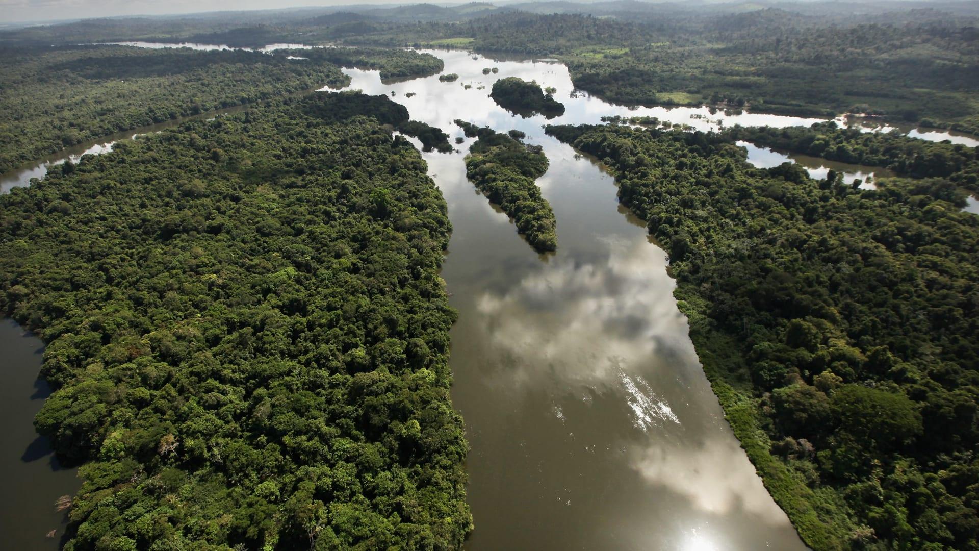 الأكثر استوائية: البرازيل