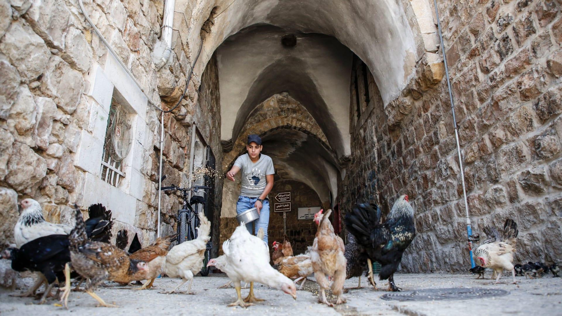 جولة في البلدة القديمة في الخليل.. موقع التراث العالمي الجديد