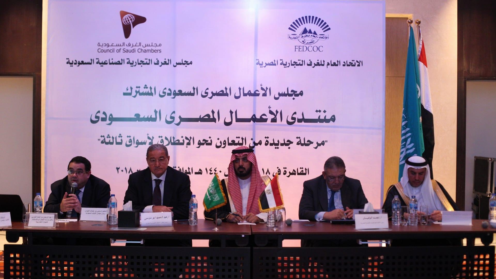 """لجان مشتركة لدعم الاستثمار وحل """"نزاعات السعوديين"""" بمصر"""