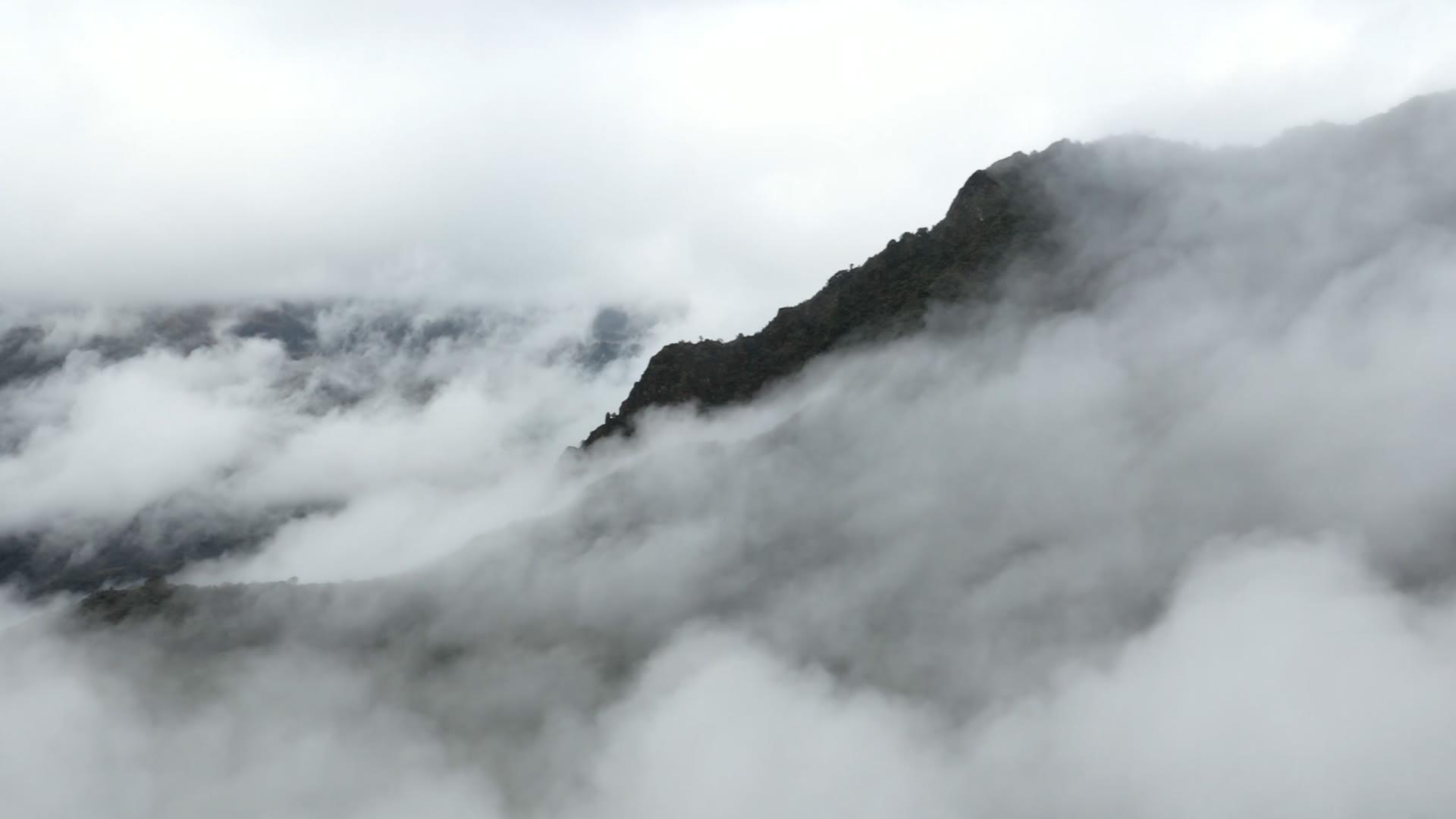 هدوء الطبيعة.. أجواء ساحرة في أشهر أنهار الإكوادور