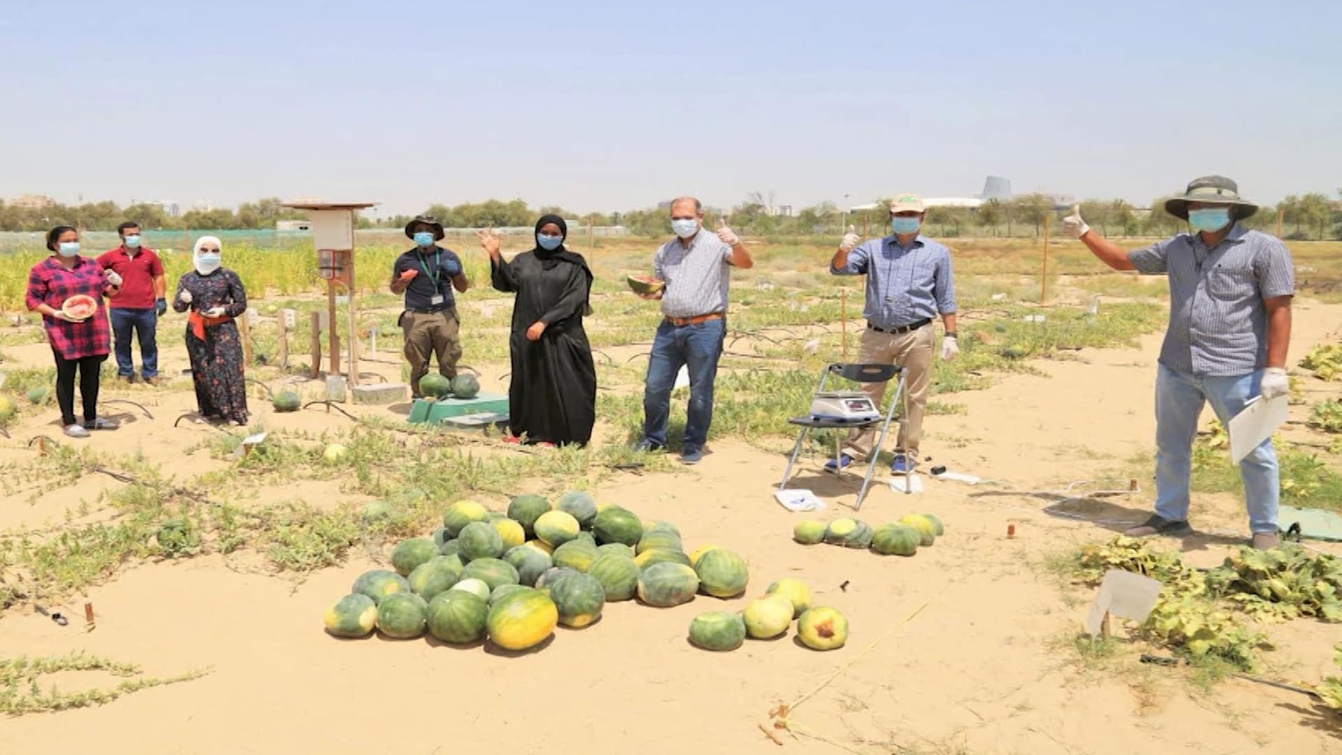 شركة قد تساعد بتحويل الصحراء إلى تربة صالحة للزراعة.. وتجاربها في دبي