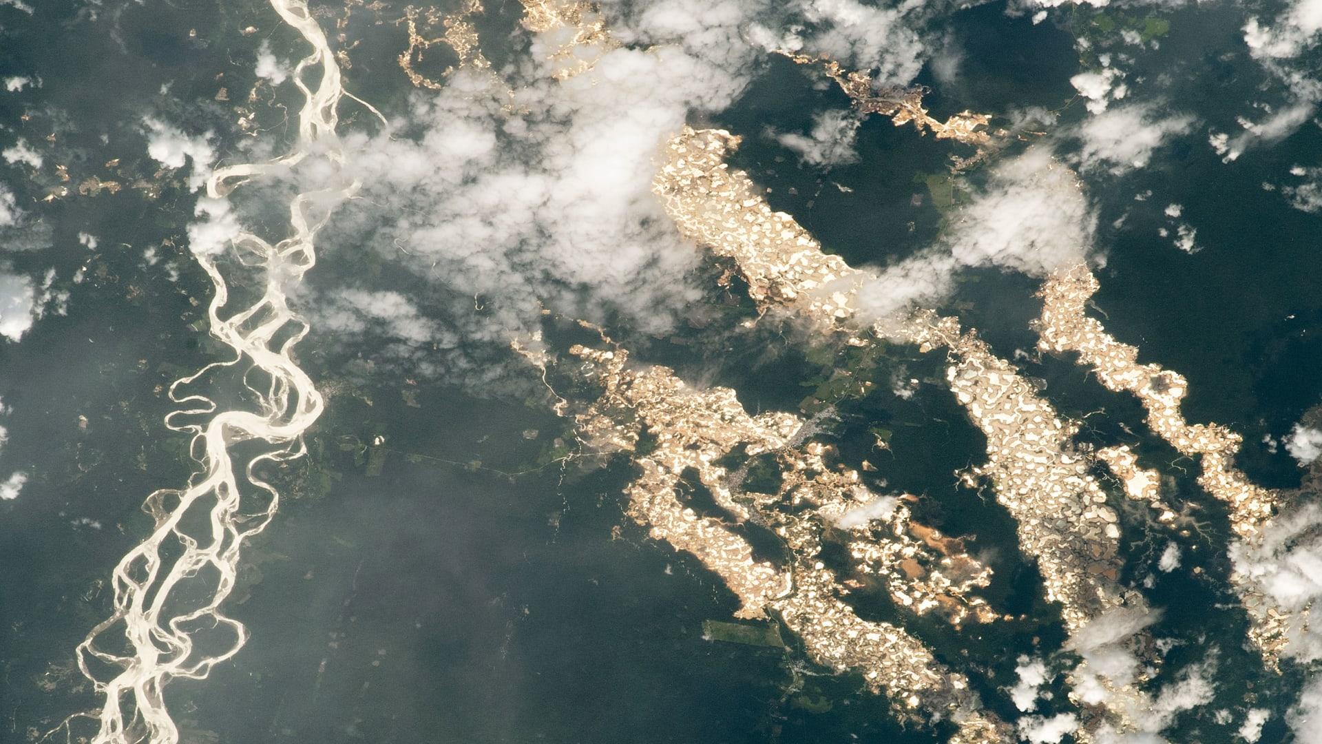 """""""ناسا"""" توثق أنهارا من """"ذهب"""" في غابات الأمازون وهذه هي الحقيقة ورائها"""