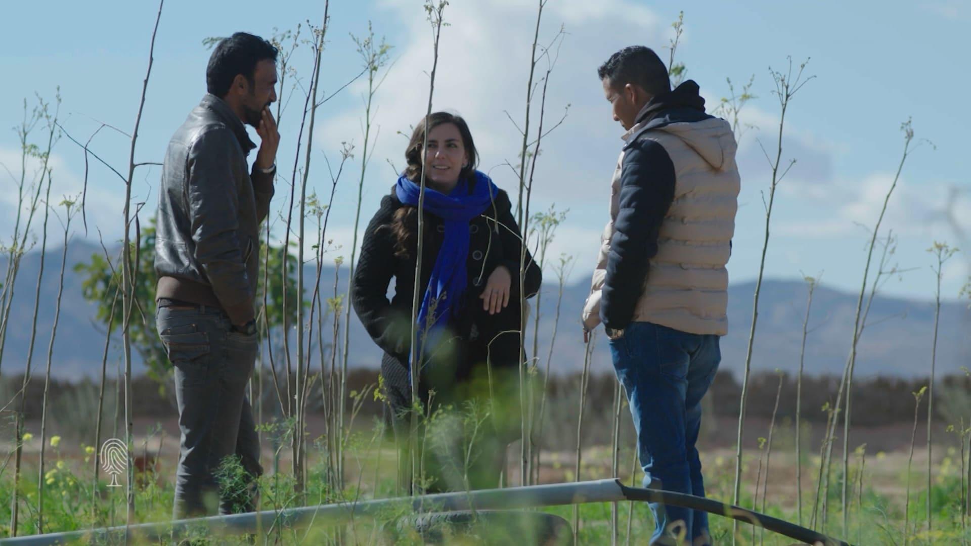 """تونسية تحارب التصحر ببناء """"سور أخضر عظيم"""" في الصحراء الكبرى"""