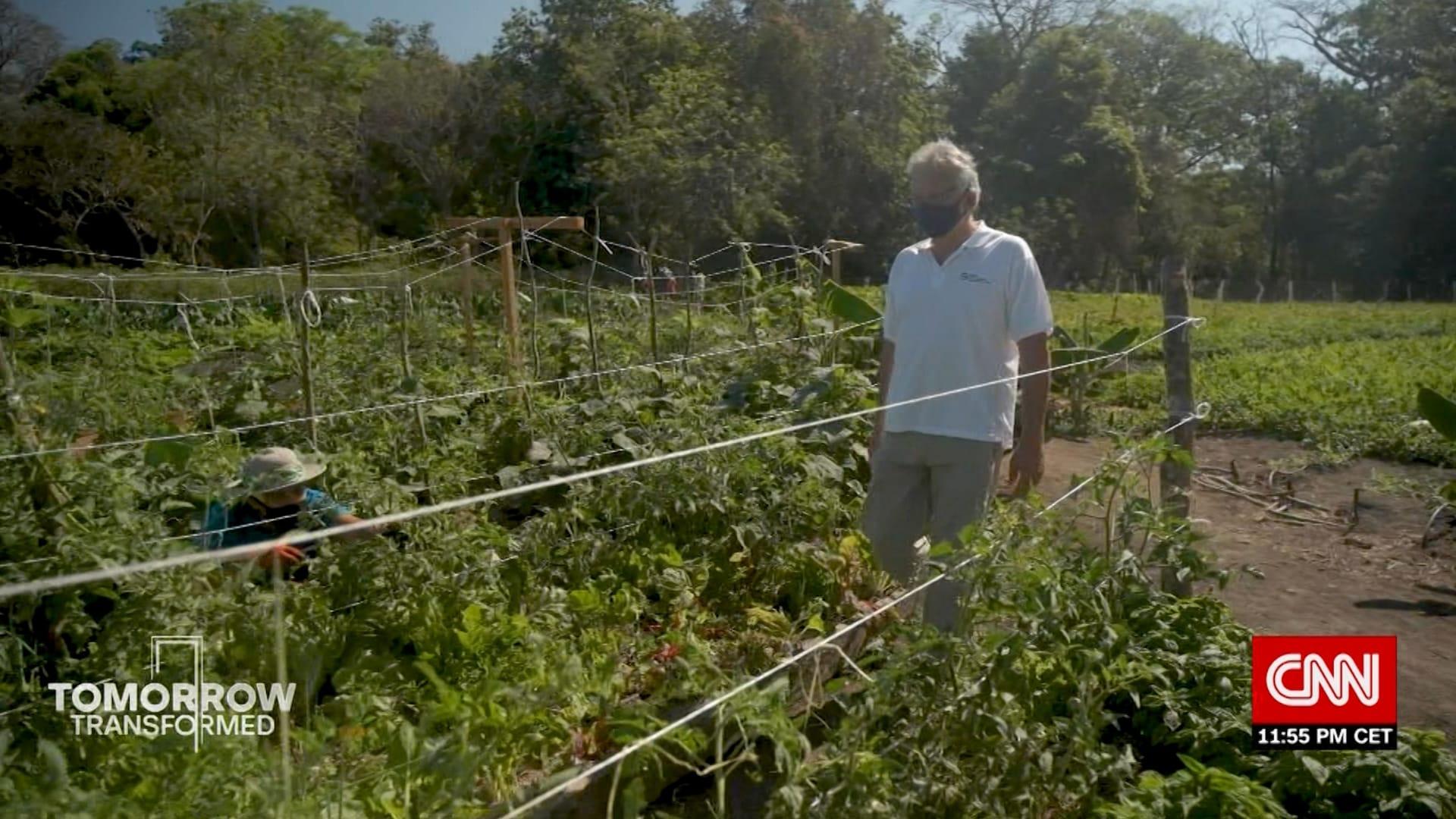 كيف استغلت كوستاريكا جائحة كورونا لتطبيق الزراعة المتجددة؟