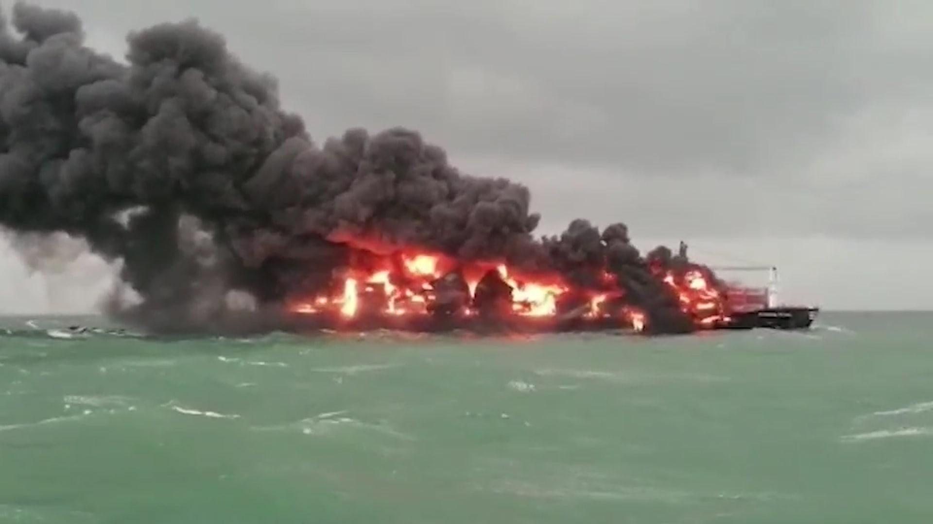 تلوث سفينة سريلانكا الغارقة يقتل الحياة البحرية المهددة بالانقراض