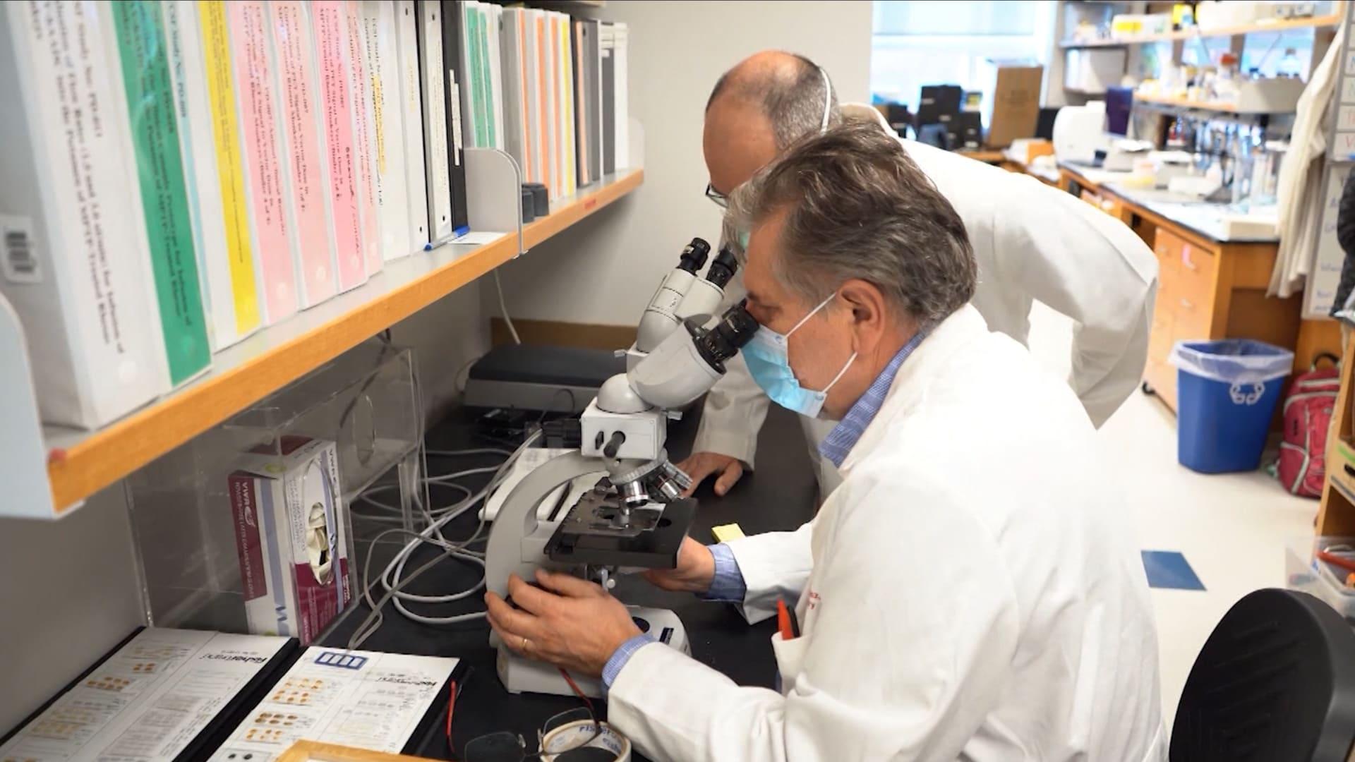طريقة جديدة لإيصال الدواء إلى الدماغ.. كيف يمكن استخدام العلاج الجيني في التعامل مع مرضي باركنسون والزهايمر؟