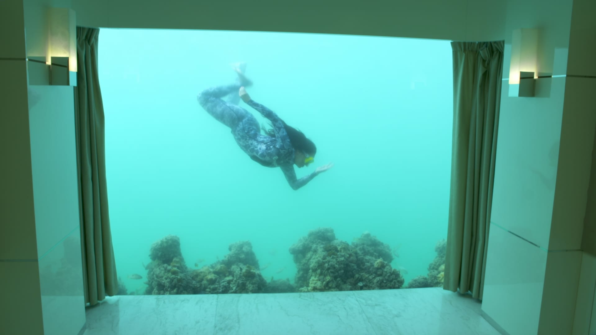 من التأثير عبر المنصات الاجتماعية إلى تجديد الحياة المرجانية .. تعرفوا إلى هذا المشروع في دبي