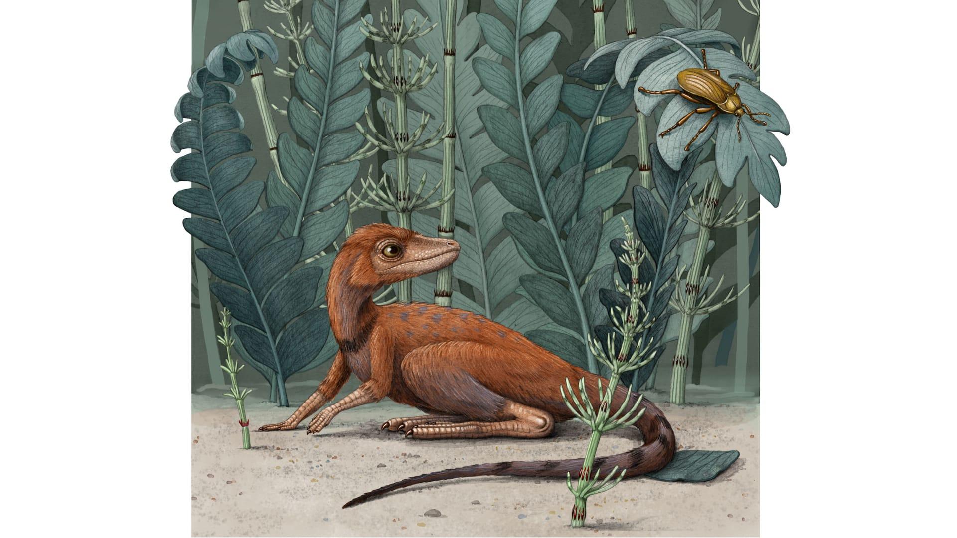 يعادل هاتفا محمولا بحجمه.. رجل يعثر على ديناصور صغير في الصحراء الليبية