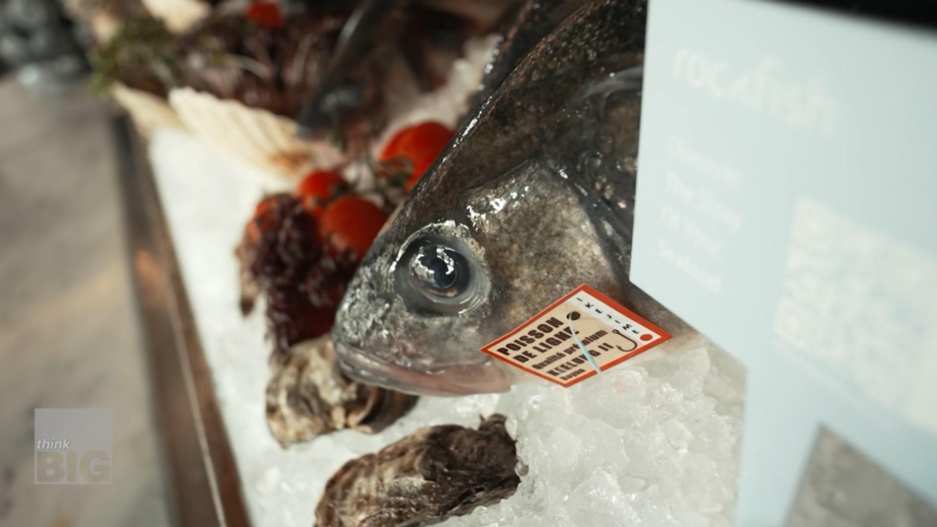 لمنع الاحتيال.. سوق إلكتروني يتتبع رحلة الأسماك التي تشتريها منذ لحظة اصطيادها